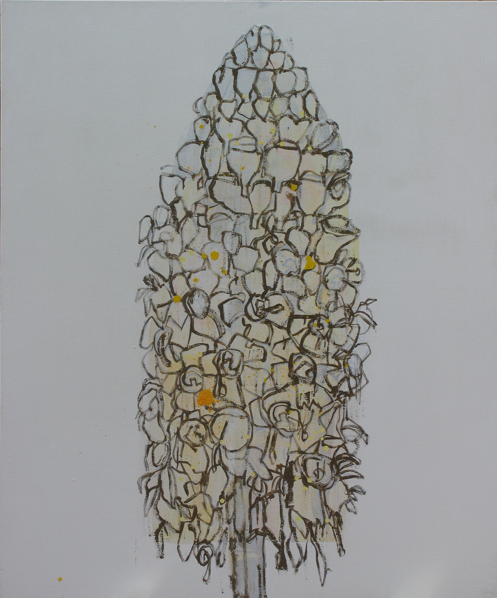 Cistanche Tubulosa #4