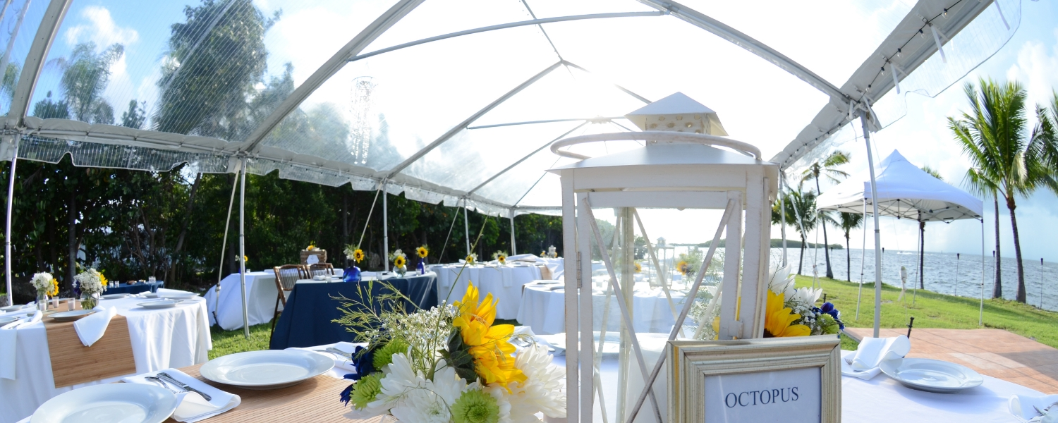 tent tables linens platewear runners.JPG