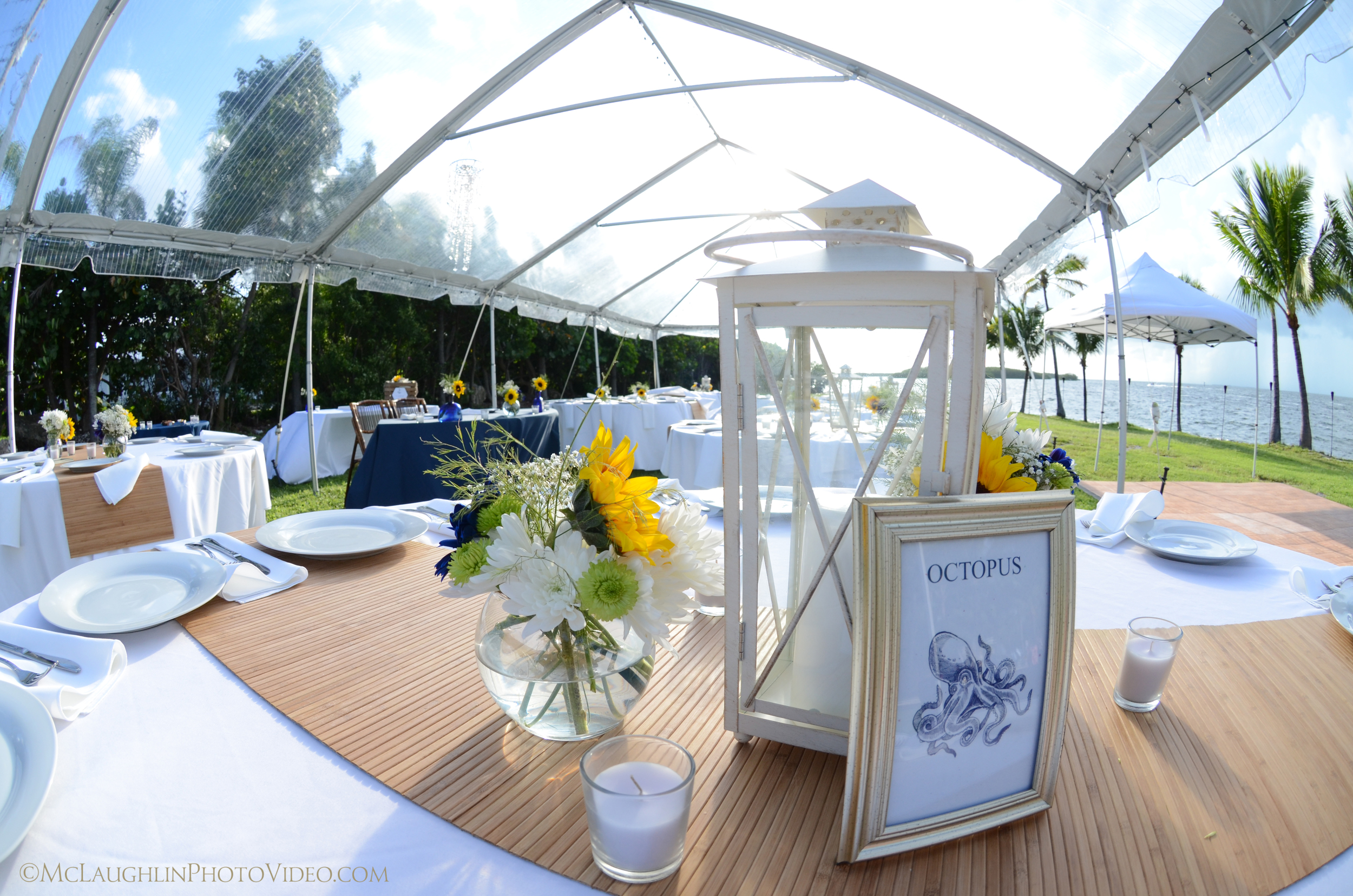 Tent, Tables, Linens, Plateware, Runners