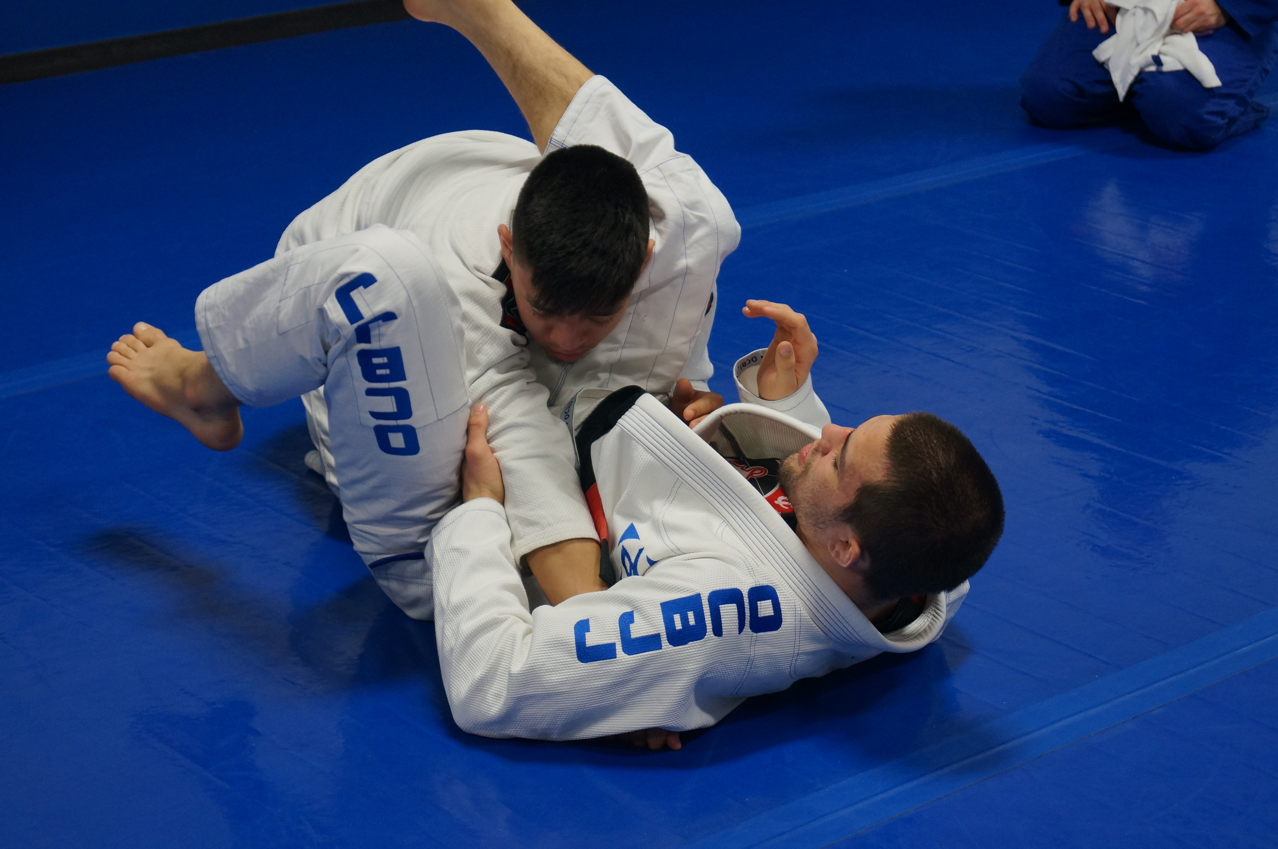 Garry Tonon Bjj Instruction in Brunswick, NJ