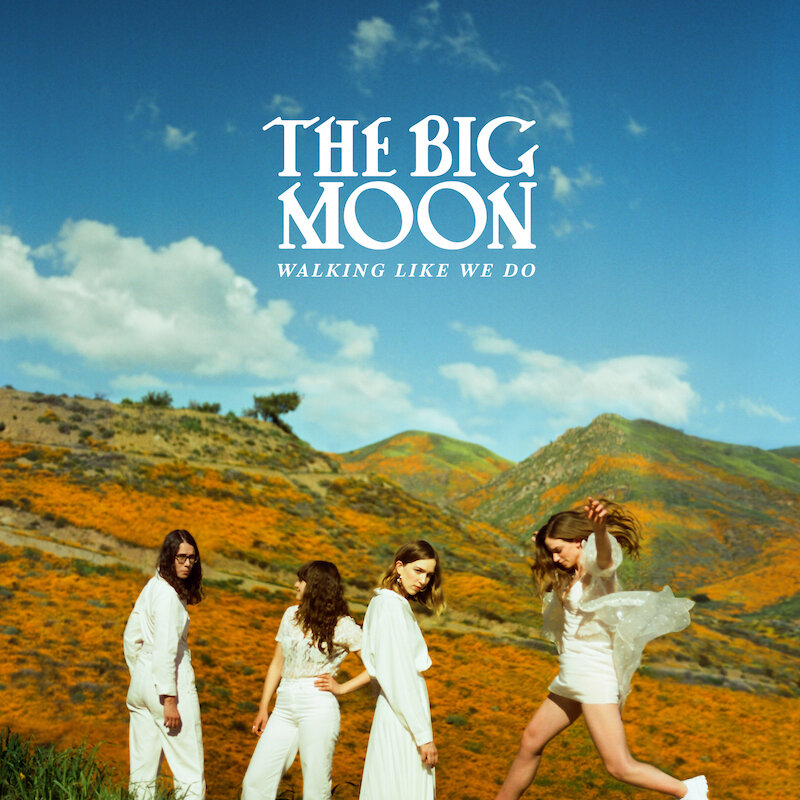 The Big Moon Album Cover by Pooneh Ghana
