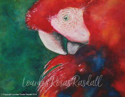 rojo | Watercolor Red Parrot Painting by Lourdes Rosas Rasdall