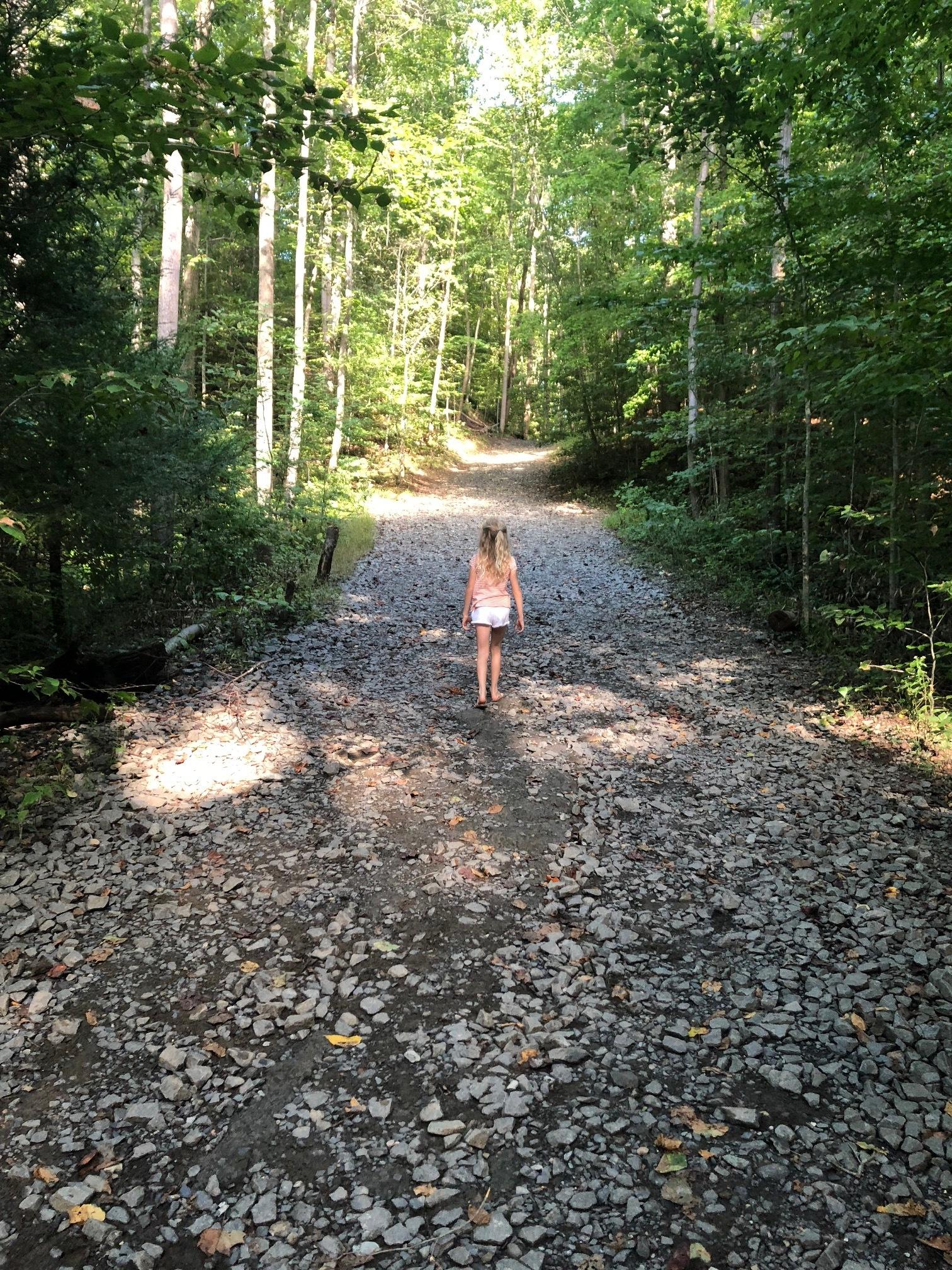 Stella's Path