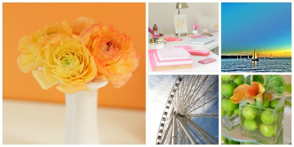 Here are just a few of the images we love from Alli's COLOR gallery!
