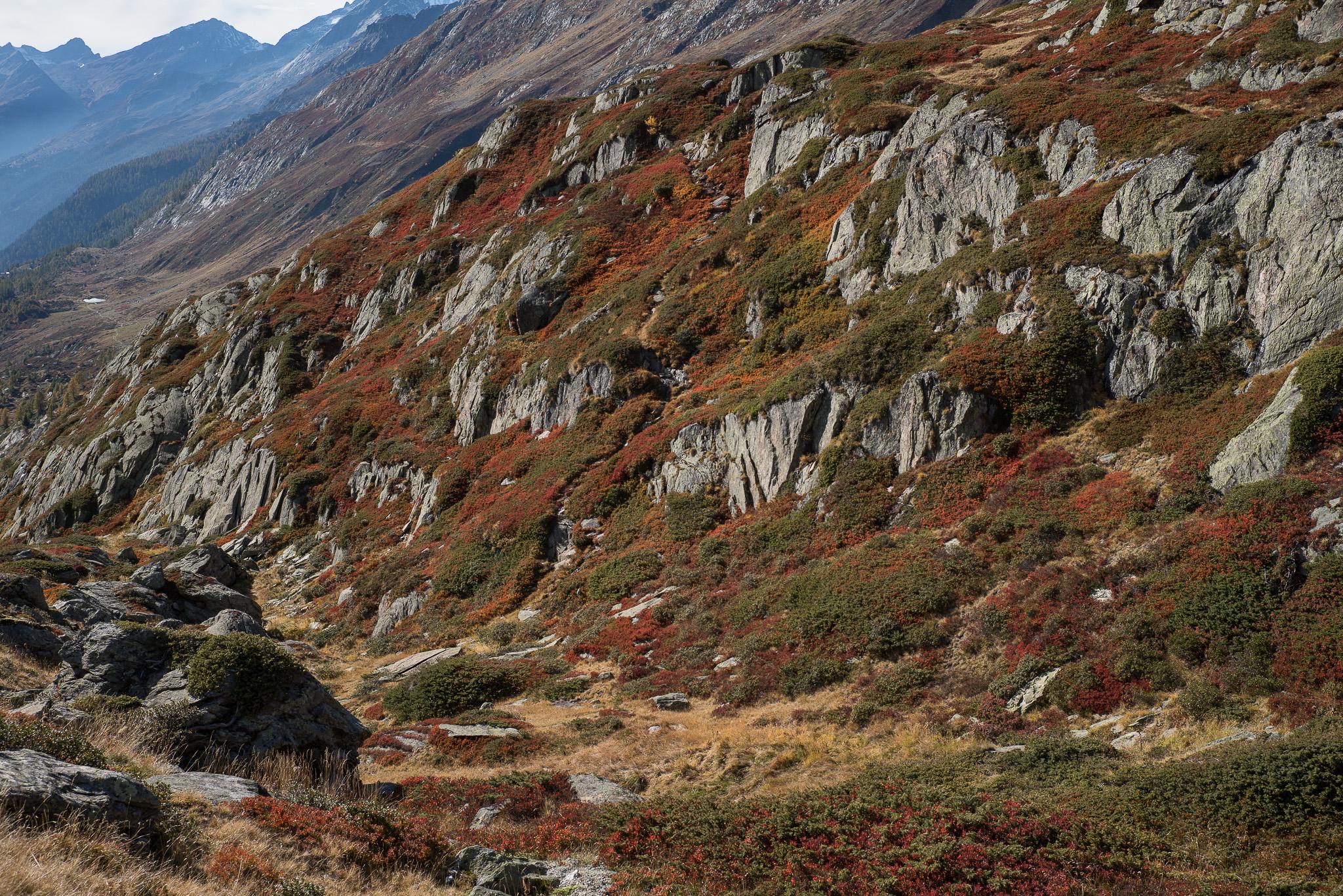 05-Lötschental-0022-P-1507.jpg