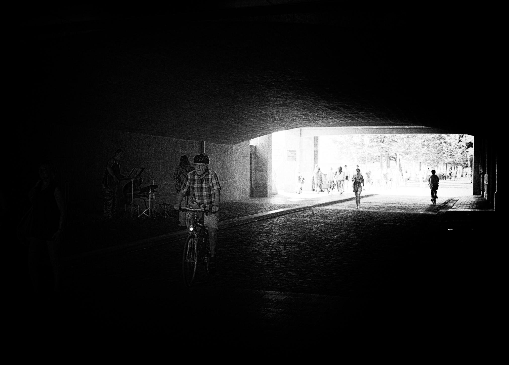 2014 licht