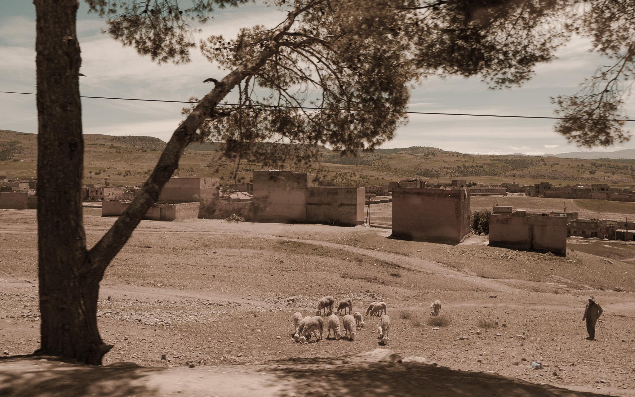 09-Marokko-0106-P-1204.jpg