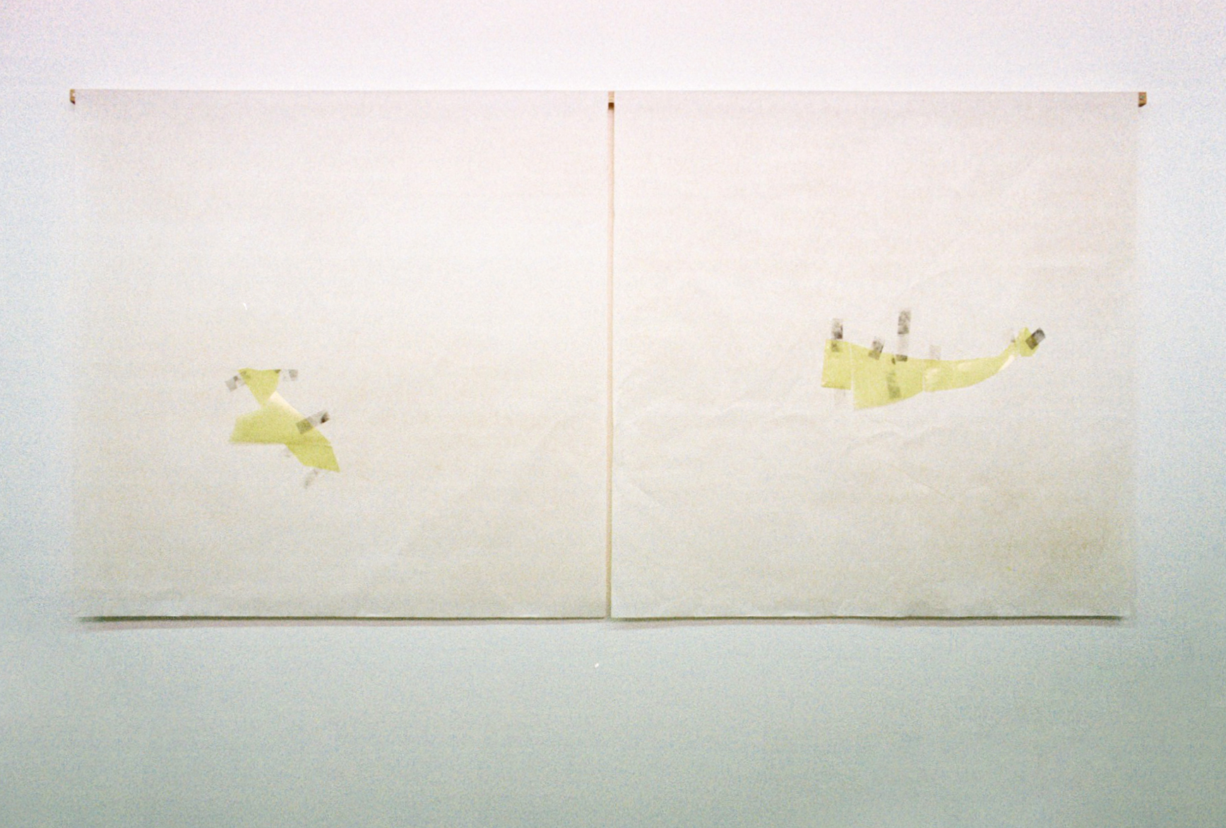 pellucid scraps  plastic, graphite, tape and tea on archival newsprint 174cm wide x variable length