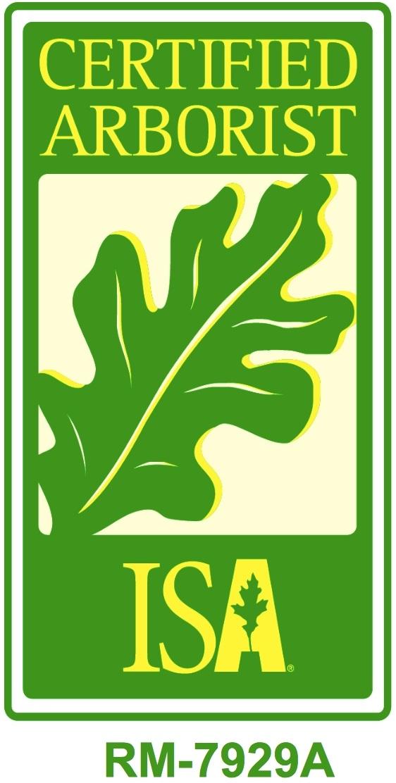 - CM ArborCare LLC is Licensed and Insured