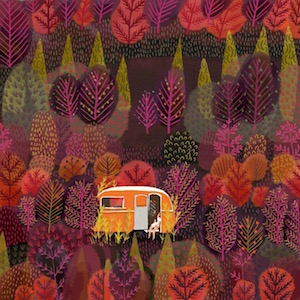 #2 - Jane Newland's autumnal teardrop dream camper.