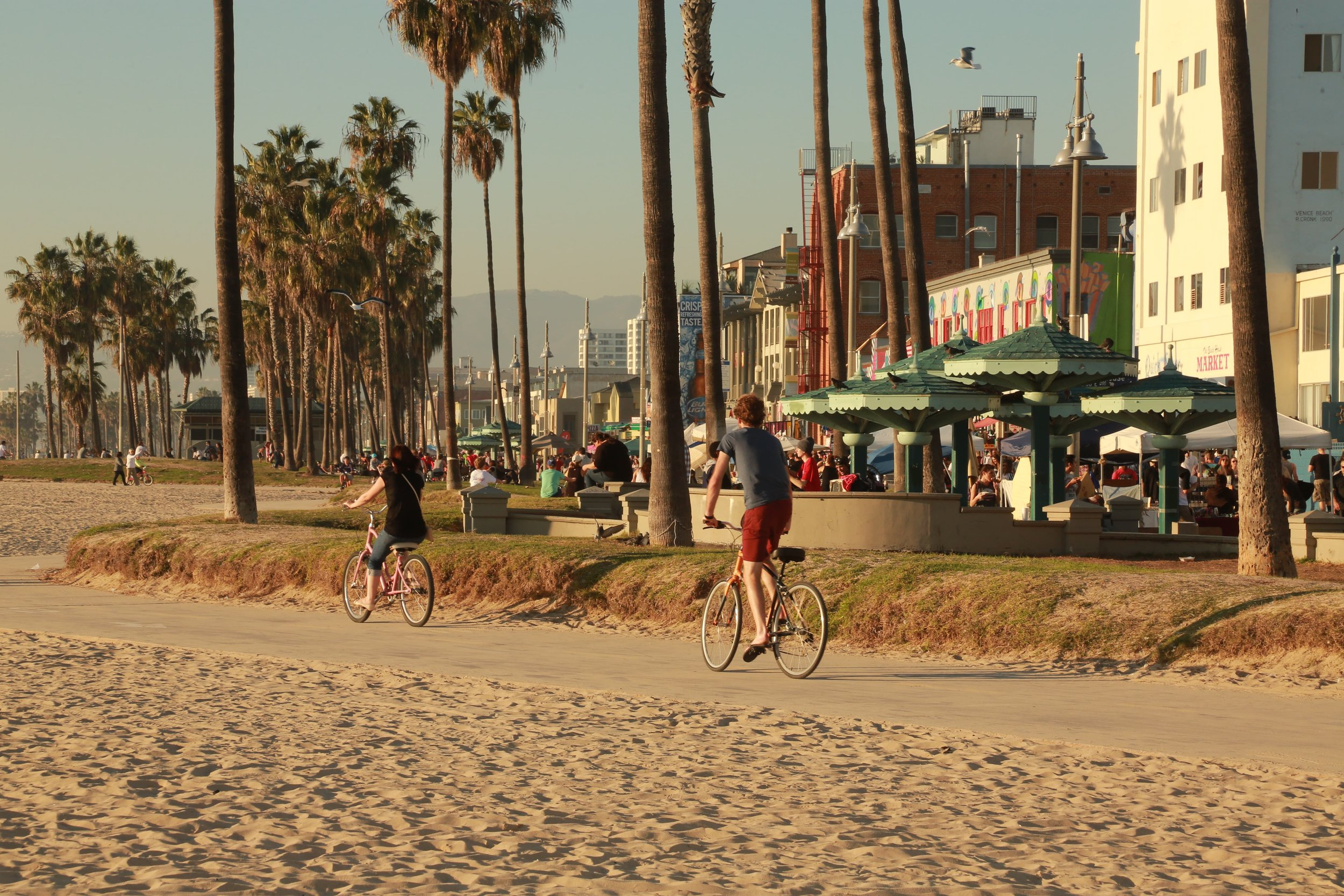 Riding bikes from Venice Beach to Santa Monica