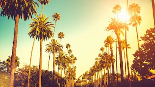 LA is a big city with a small-town feel, is it the centre of the nation's film and television industry and offers some of the best incentive experiences.  More on Los Angeles DMC .