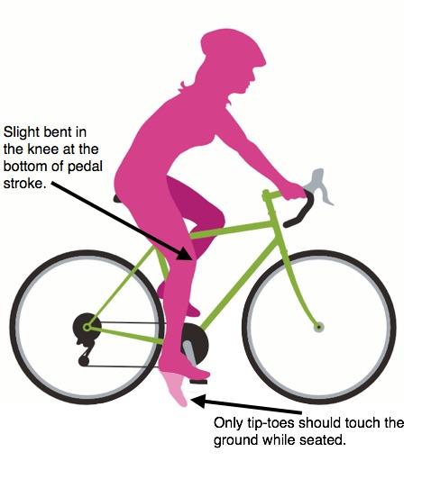 Bike Fit 2.jpg