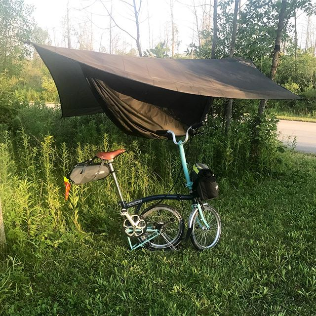 My minimal camping setup. Getting the @hennessyhammock installed proved challenging since the park's ash trees have been decimated by ash borers. #camping #hammockcamping #bromptonlife #bromptonchicago #livelargepacksmall #bikechi #chicagodaytrip #bikeovernights
