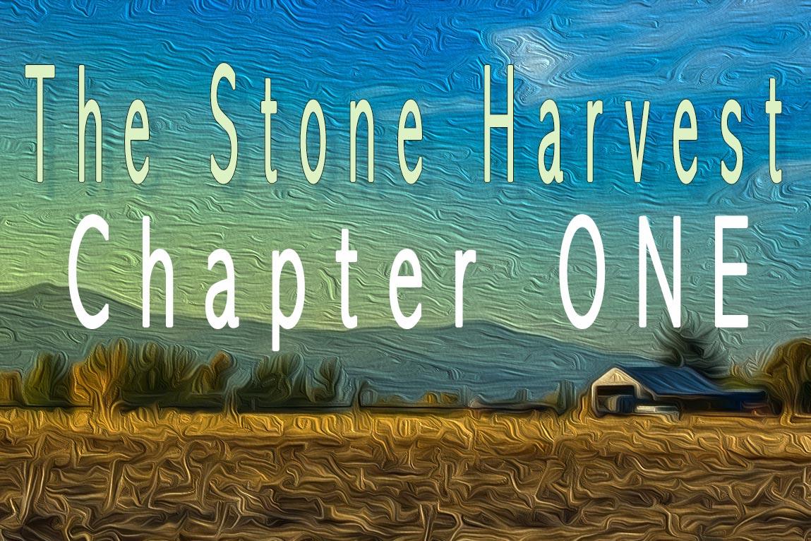 chapter 2.jpg