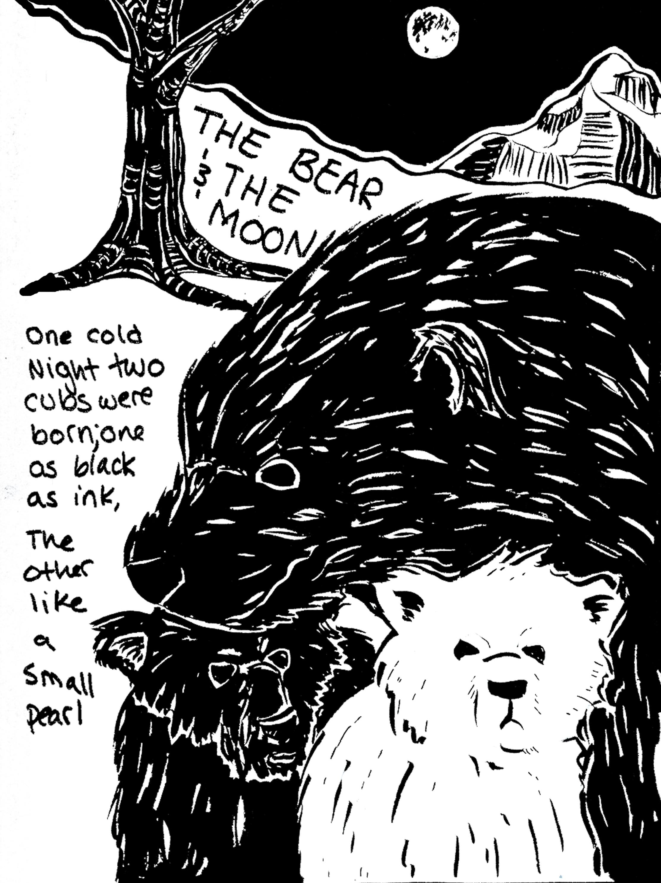 Bear_1_final.jpg
