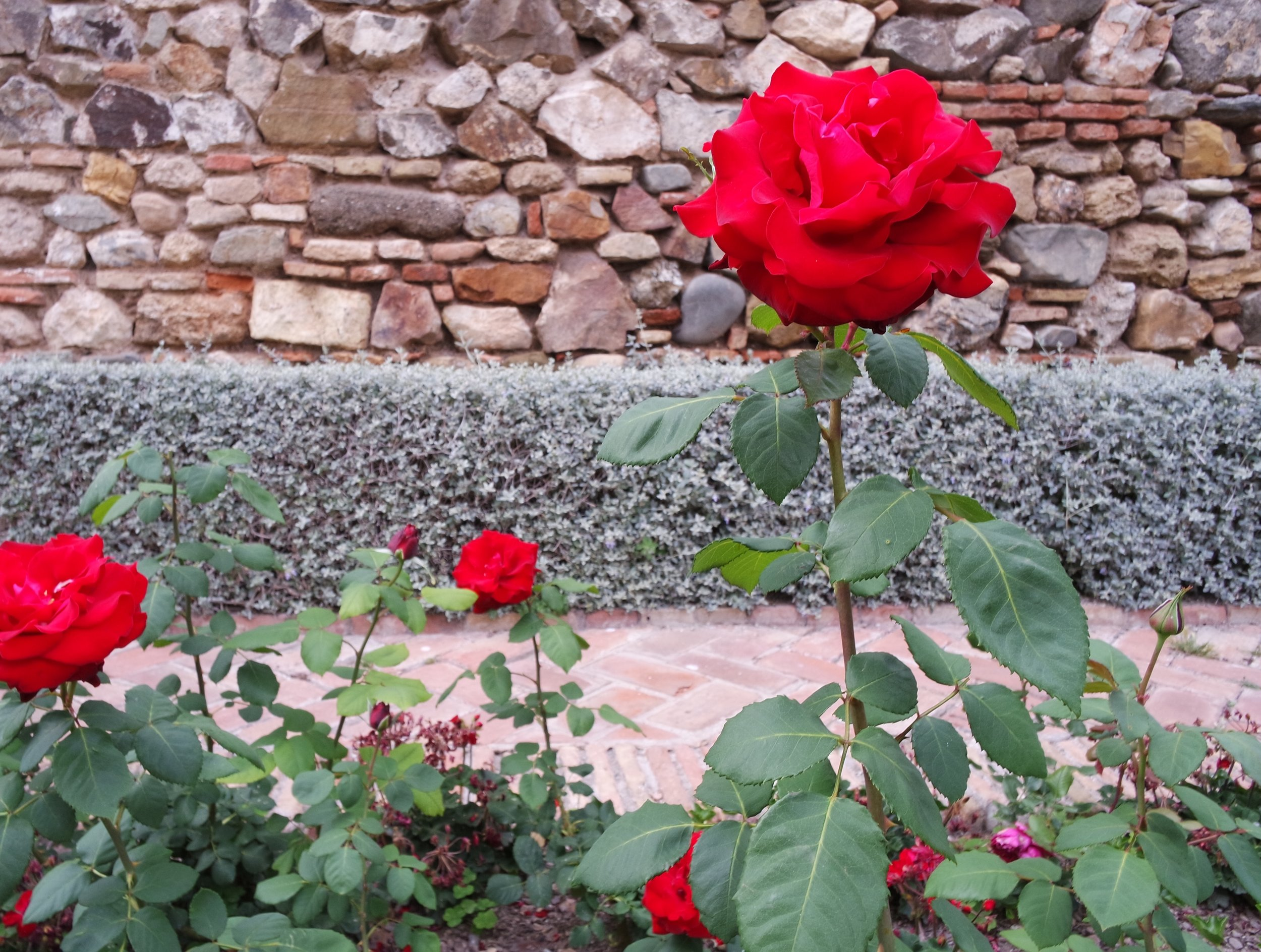 Take time to stop and smell the roses. An Islamic garden is a place of reflection and a reminder of paradise
