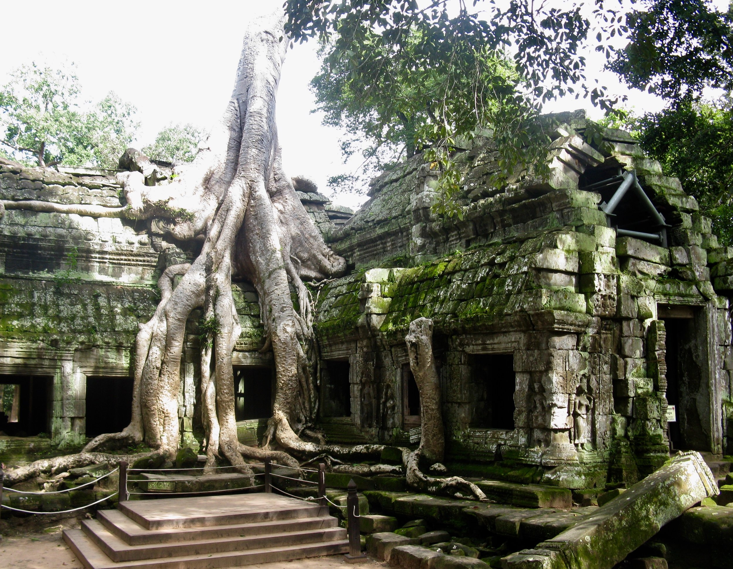 The jungle has reclaimed parts of Ta Prohm temple, which makes it a fun one to explore