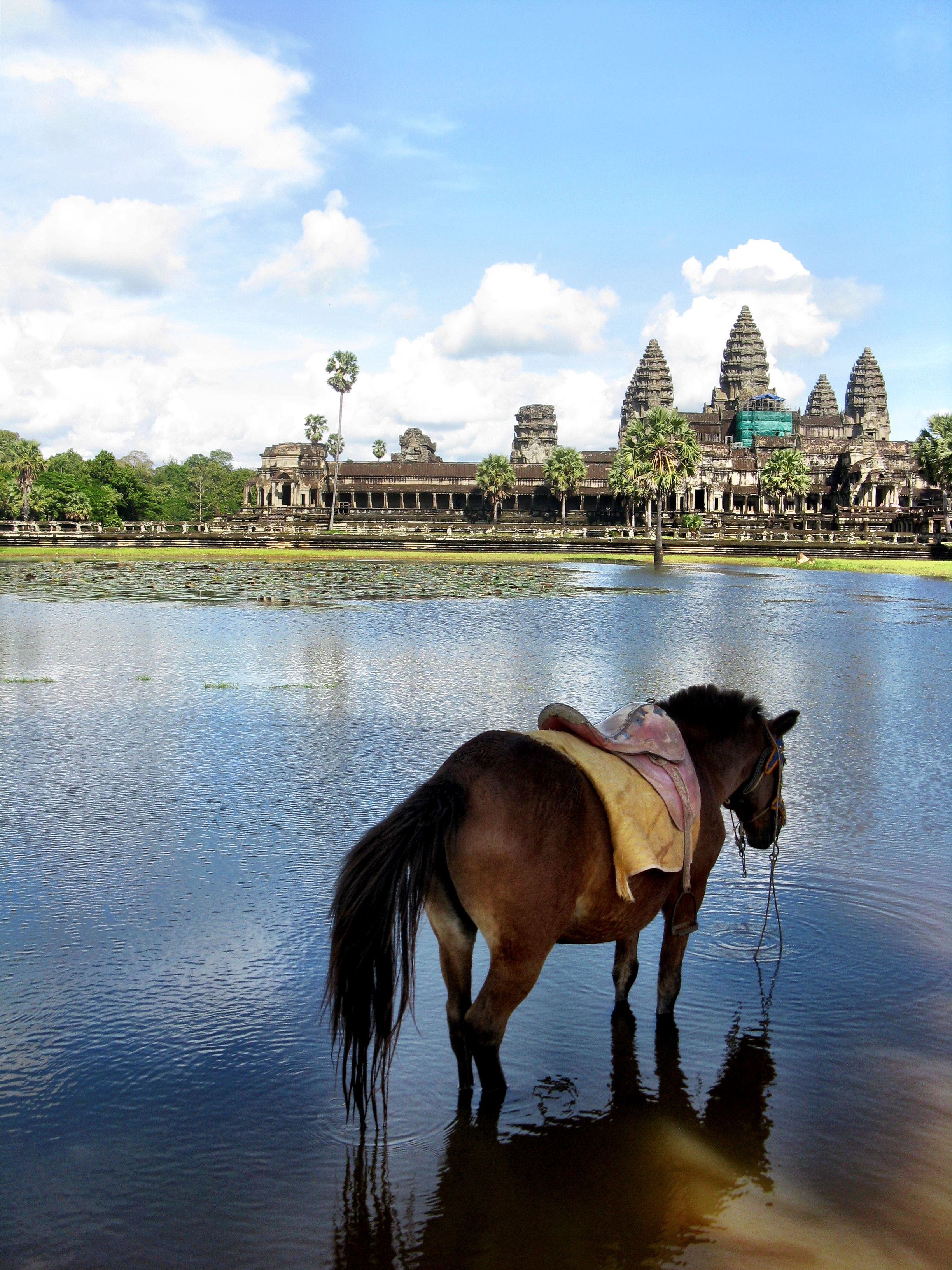 The legendary Angkor Wat