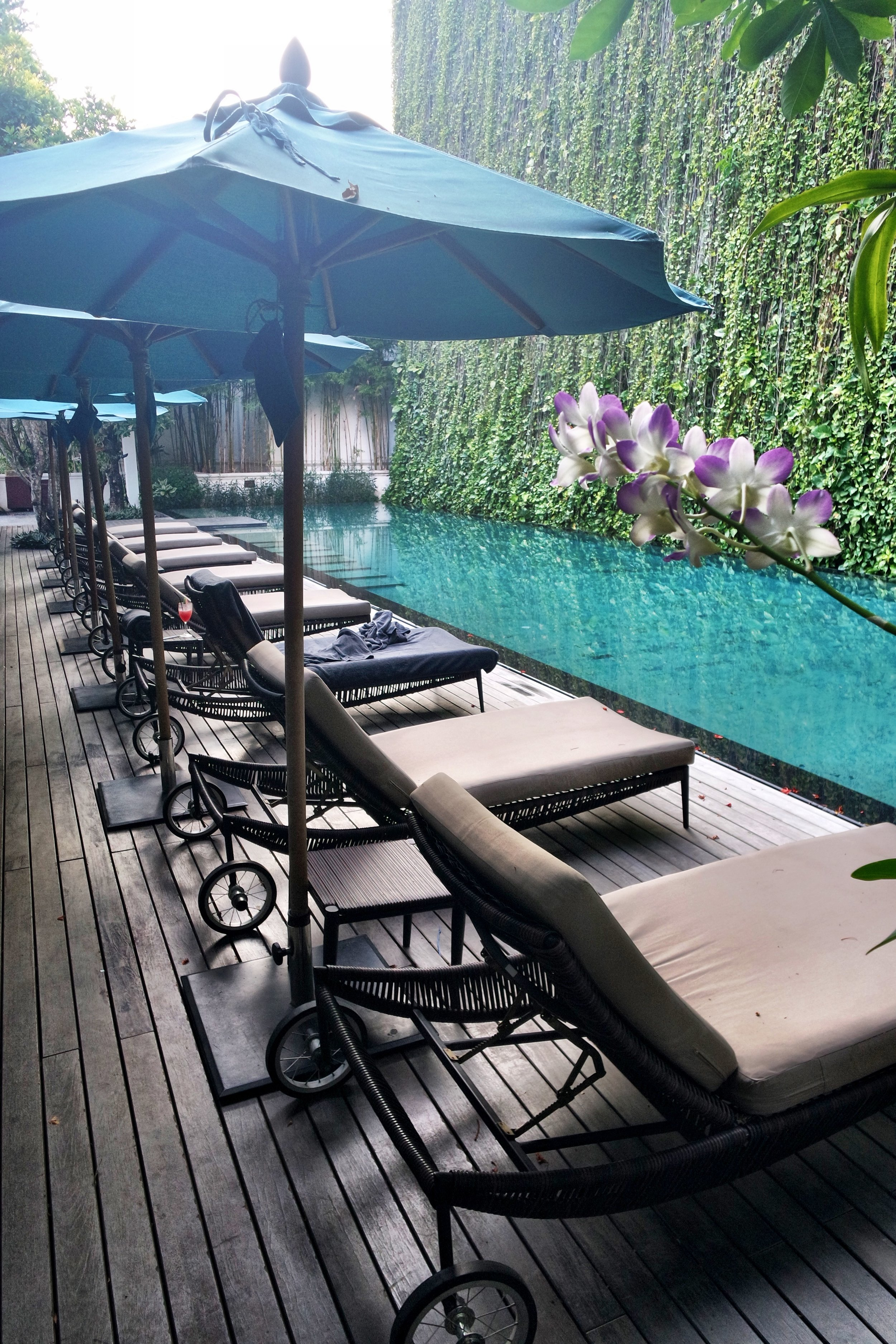 A dramatic five-story living wall of climbing green vines cleverly obscures the view of the world beyond the hotel walls. If you want to cool off, take a dip in the sapphire blue pool beneath