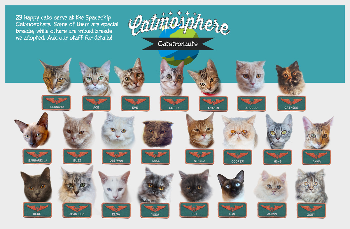 The Catstronauts of Catmosphere. How many can you spot on your visit?