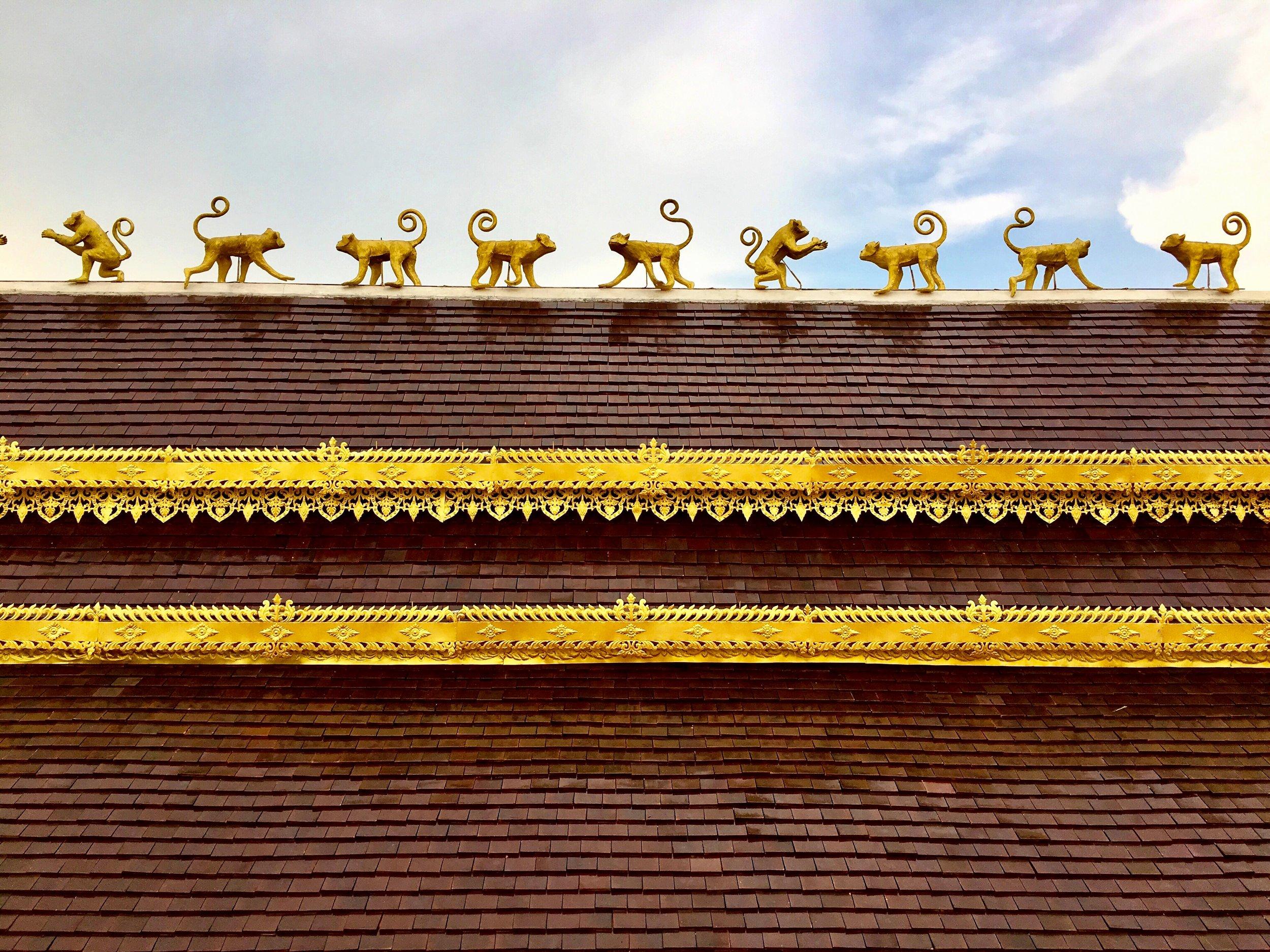 Monkeys line the sala roof