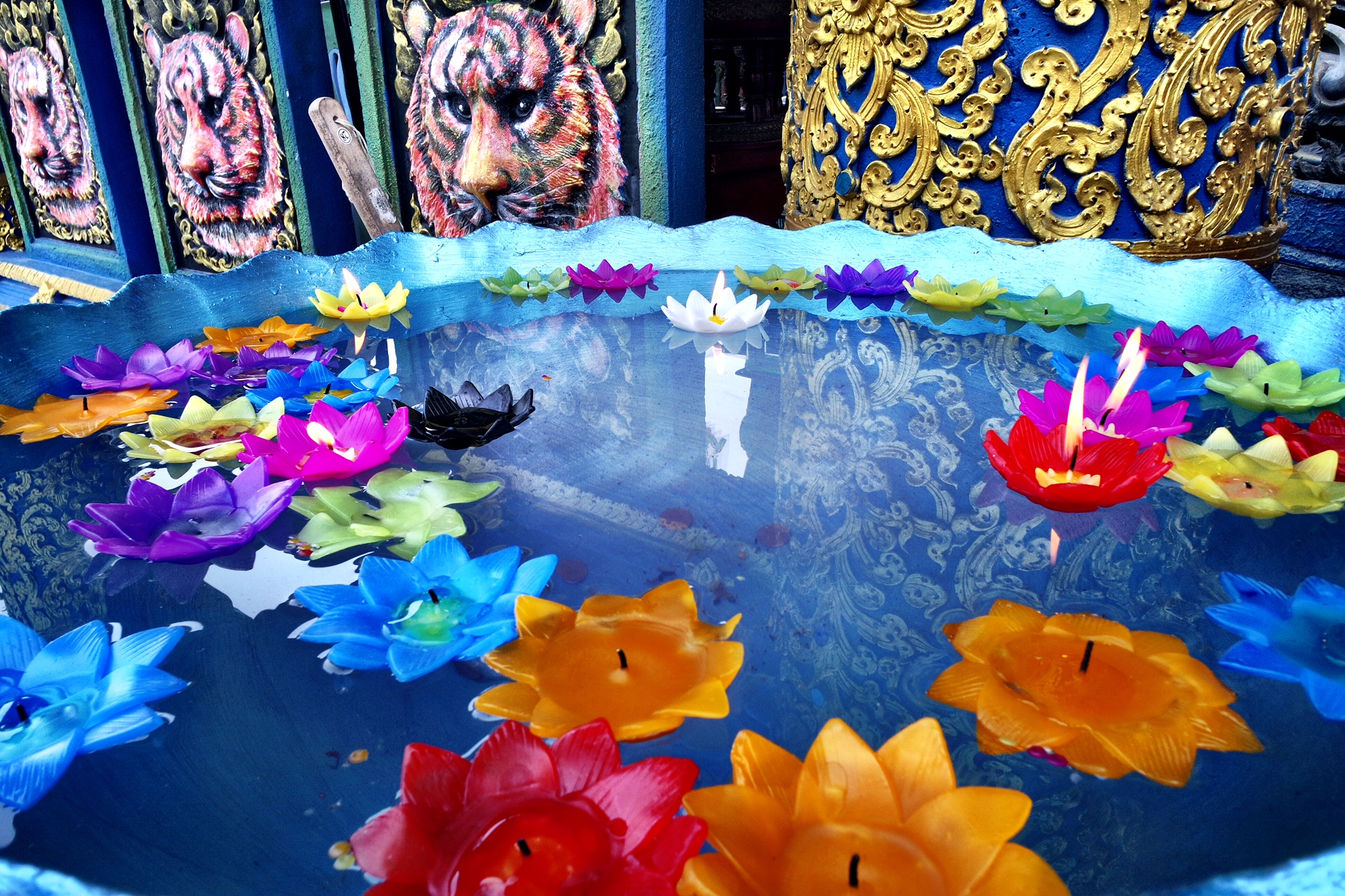 Make a donation and light a floating lotus candle