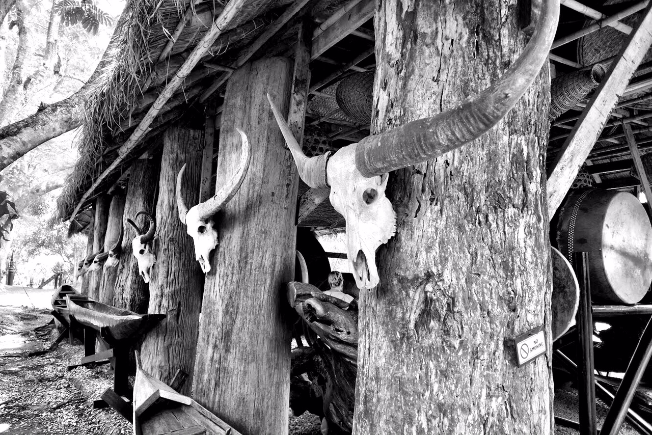 Escape the sun at the Rest House. There are skulls and horns galore at Baan Dam, giving the museum a primitive feel