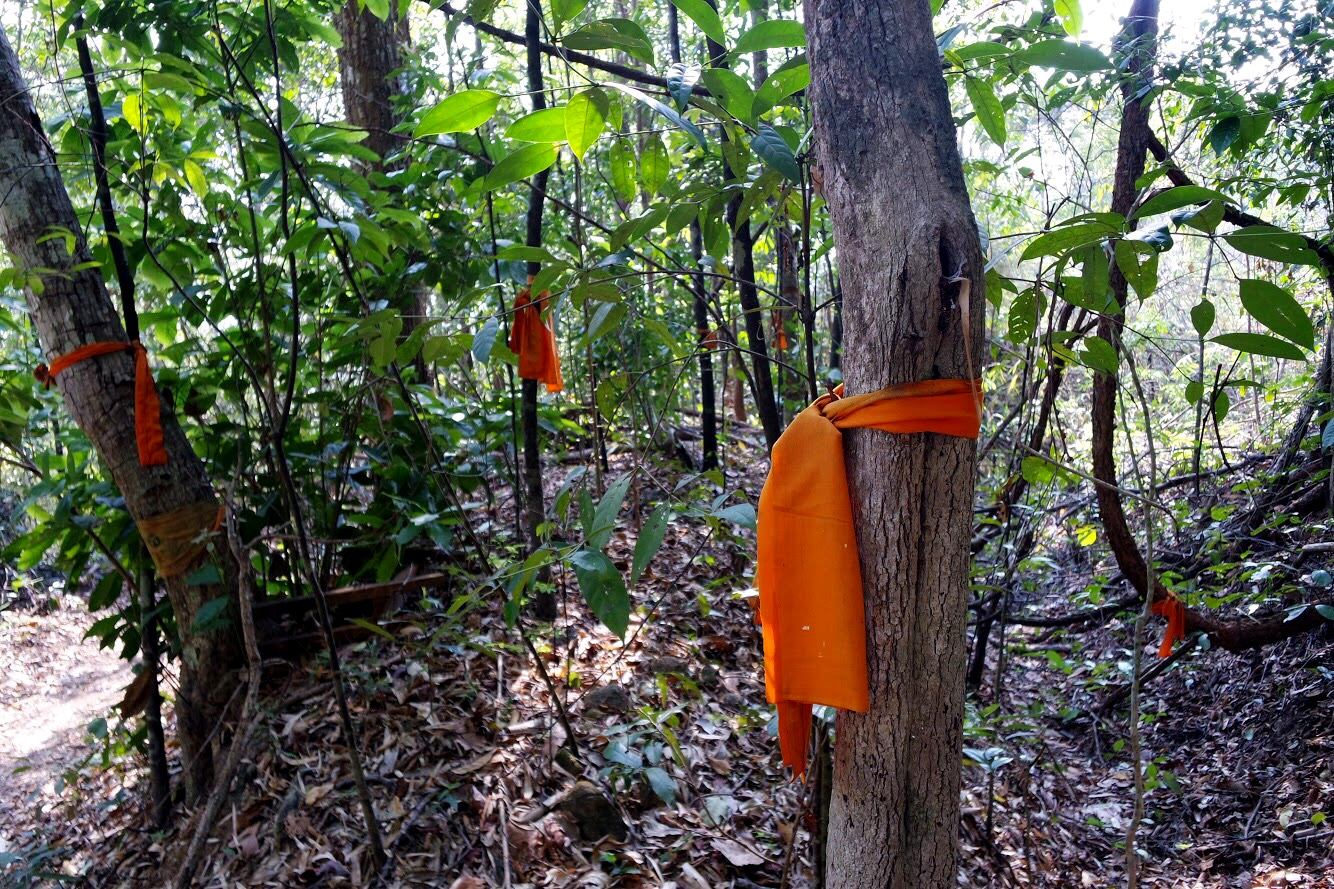 Follow the saffron markers as you hike the Monk's Trail