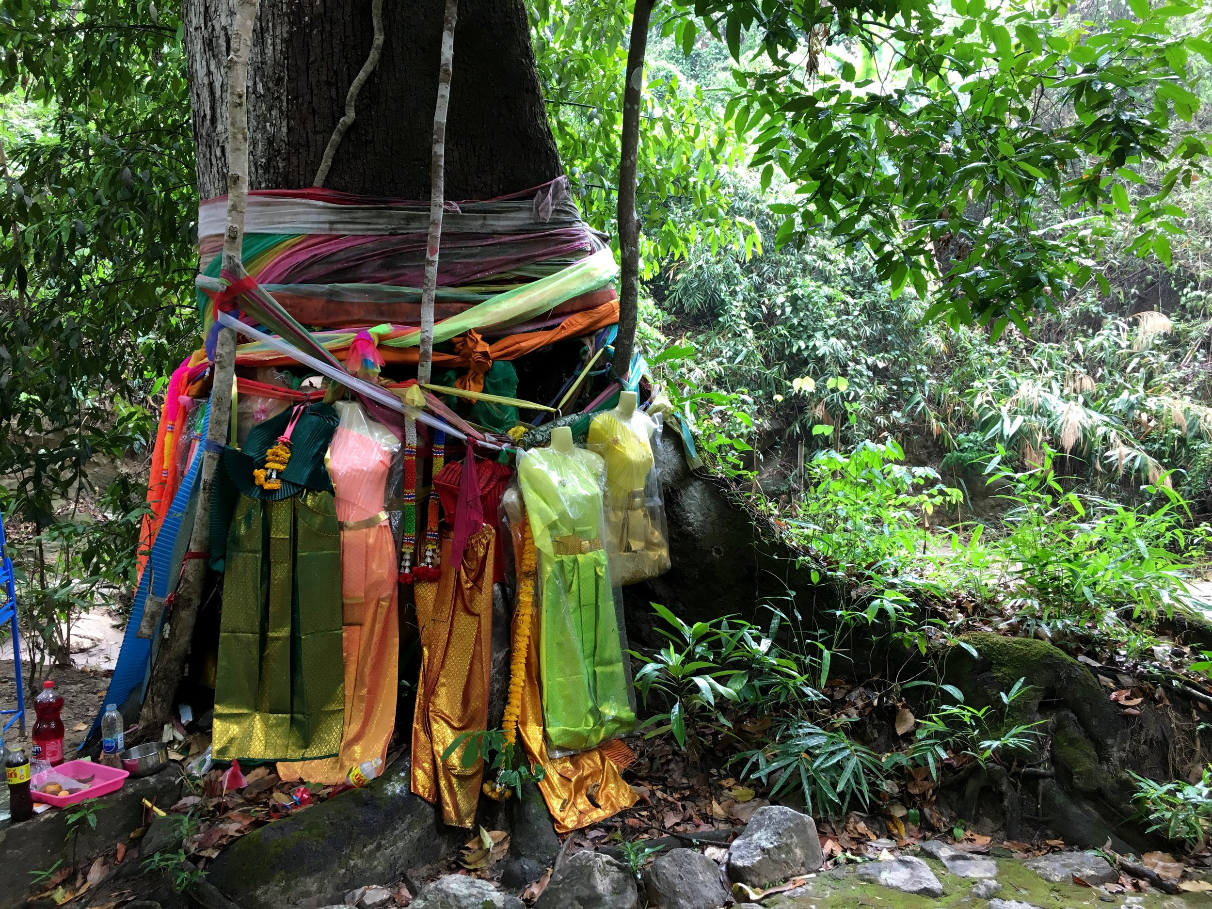These ribbons and dresses are offerings to the Thai tree spirit, Nang Ta-khian, who can help you win the lottery, heal, help with a pregnancy — or lead you to your death