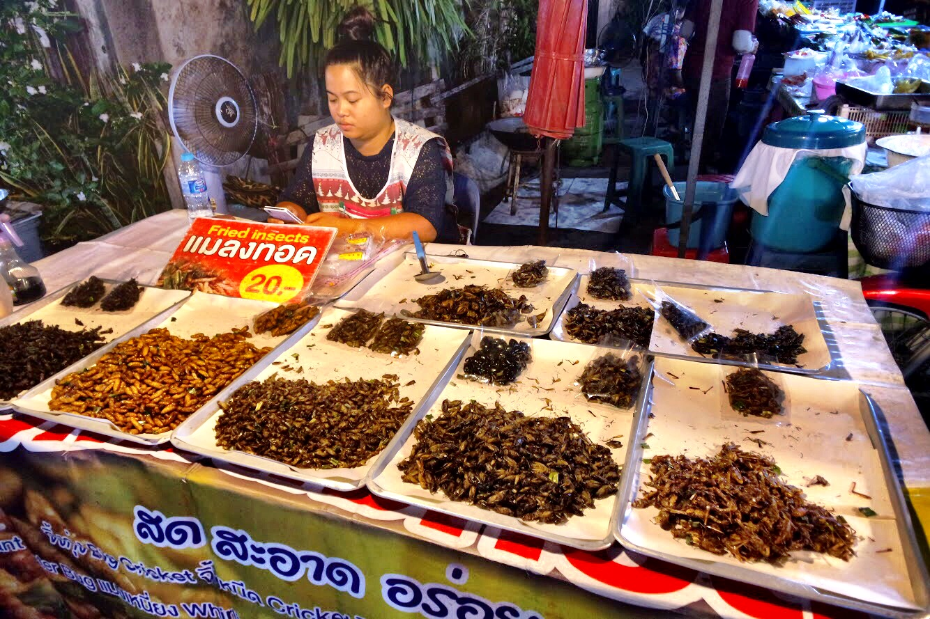In the mood for a snack? This vendor sells a variety of crispy insects to fulfill any craving! (No, we did not partake)