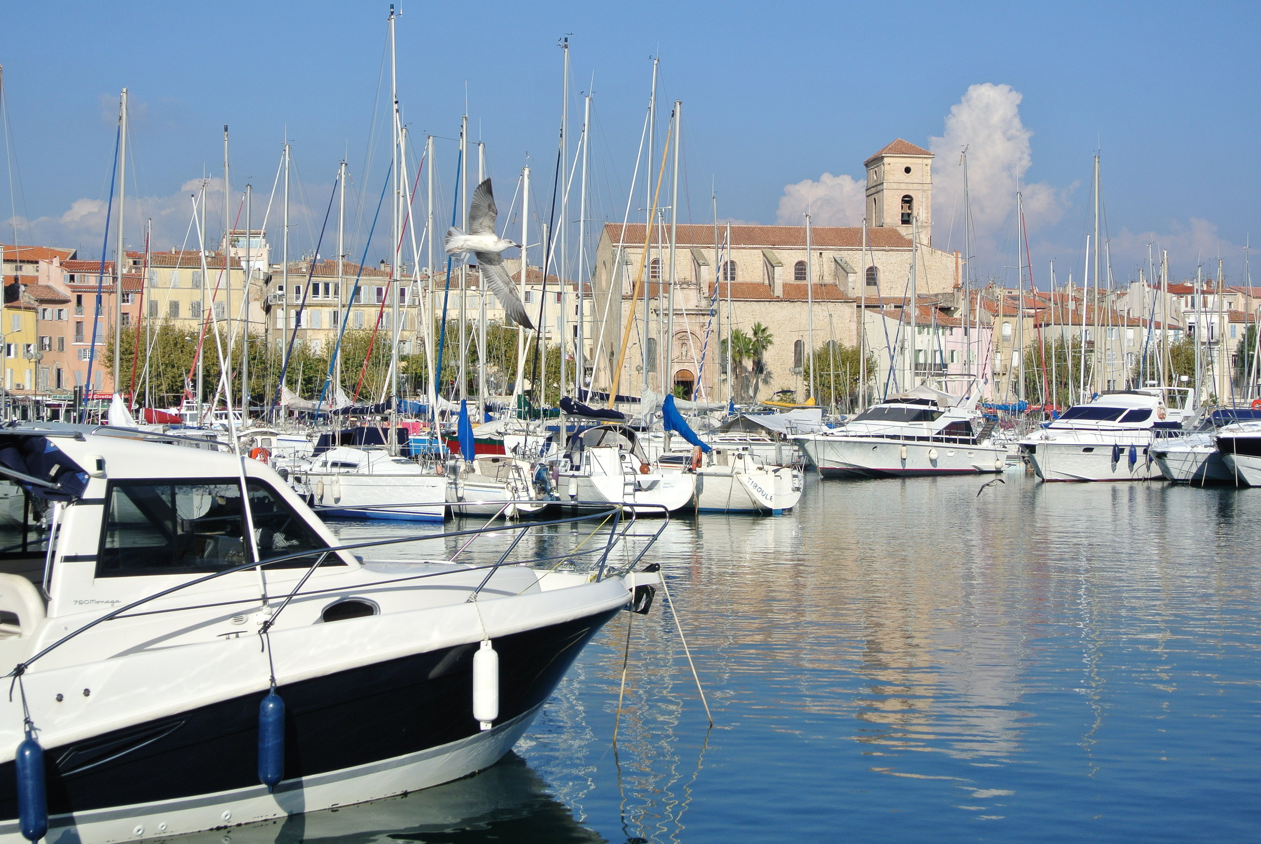 Yachts, sailboats and seagulls in a postcard-perfect setting