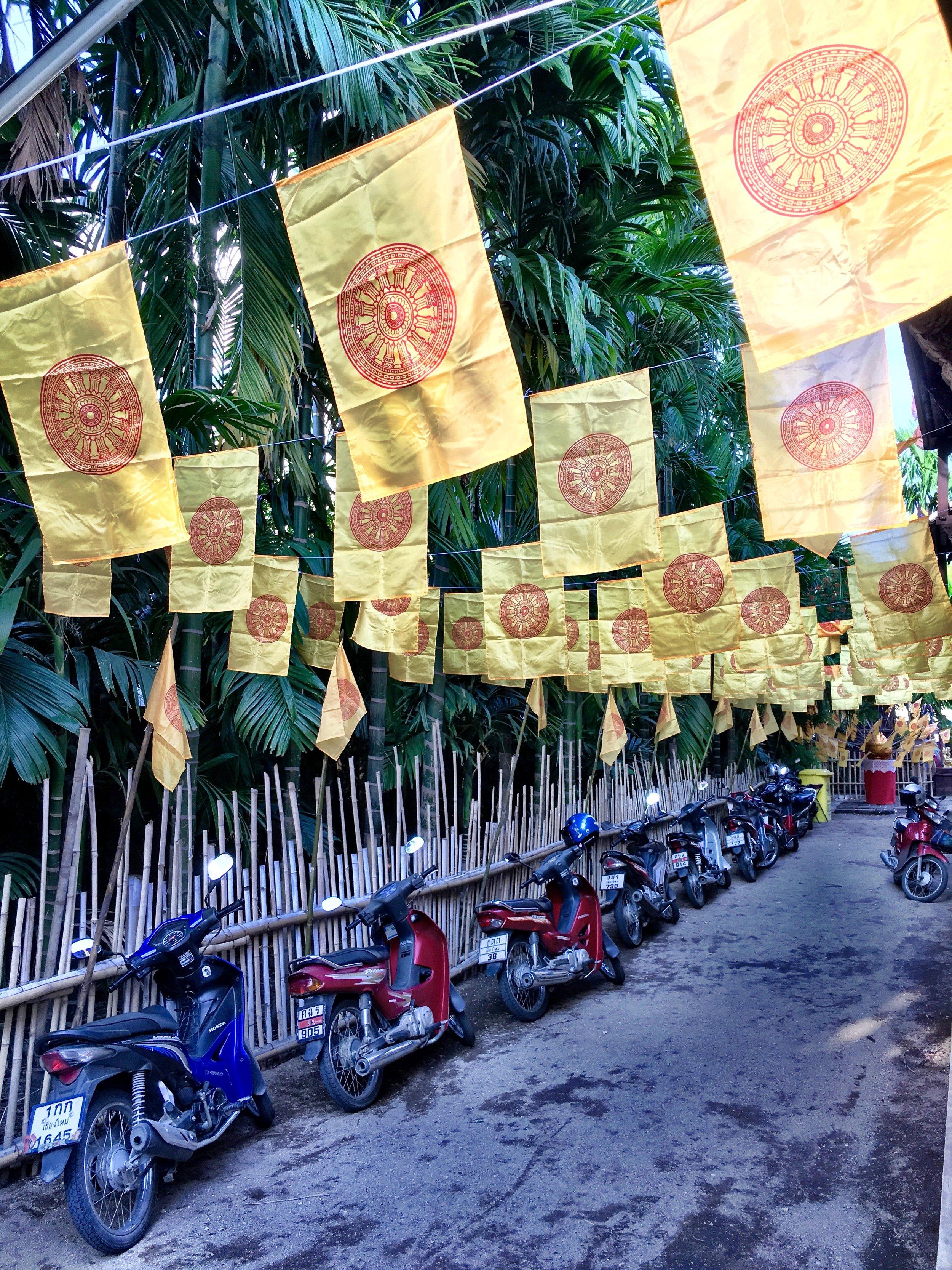 mopedsflags.jpg