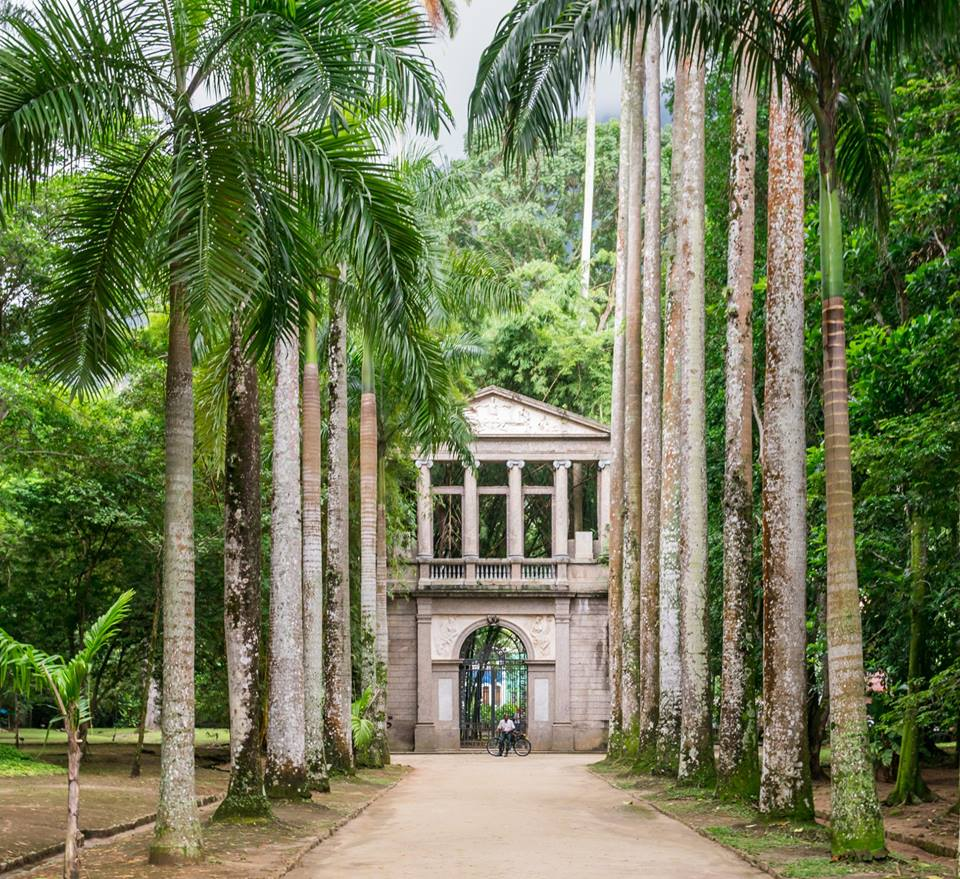 The botanical gardens in Rio felt like you're on the grounds of an abandoned plantation