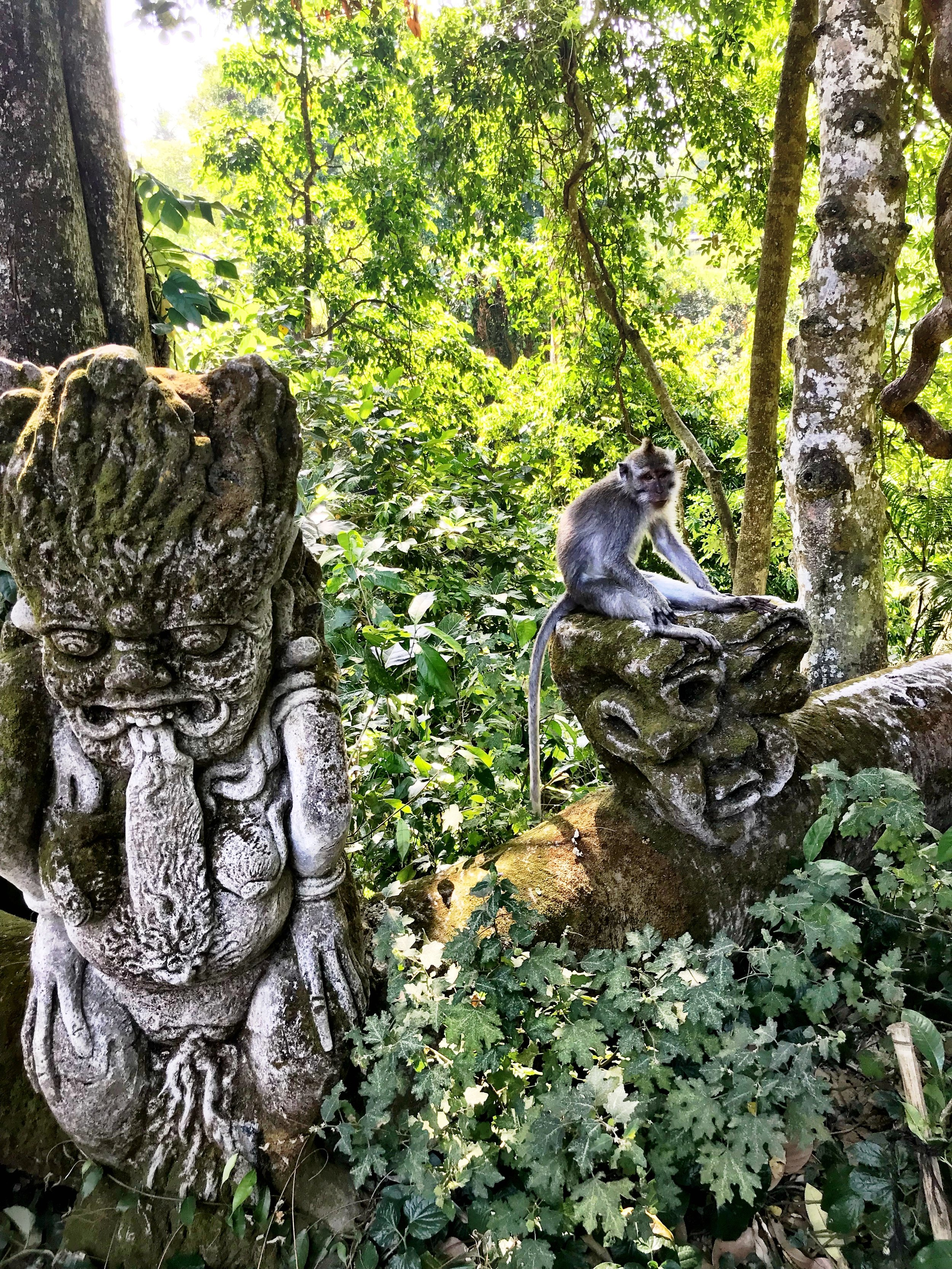 Delightfully horrific statues pair nicely with the monkeys