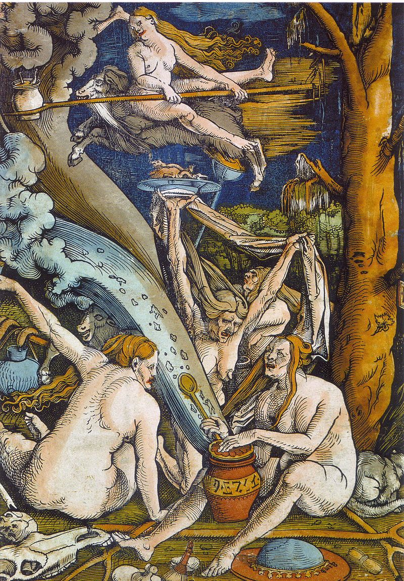 Don't sabbaths look fun?!  Hexen , or  Witches , by Hans Baldrung, 1508