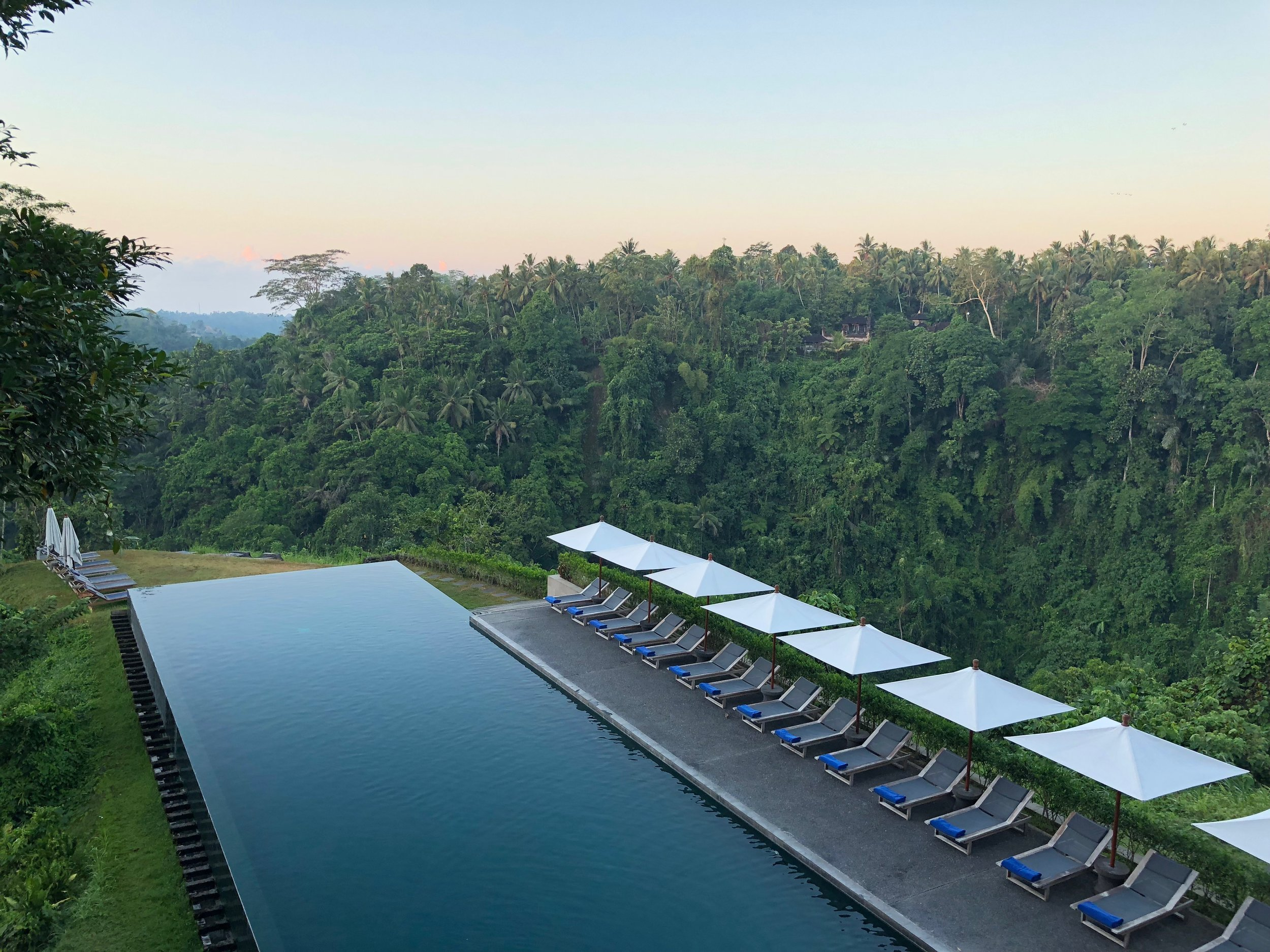 The pool really is the star of the show at the Alila