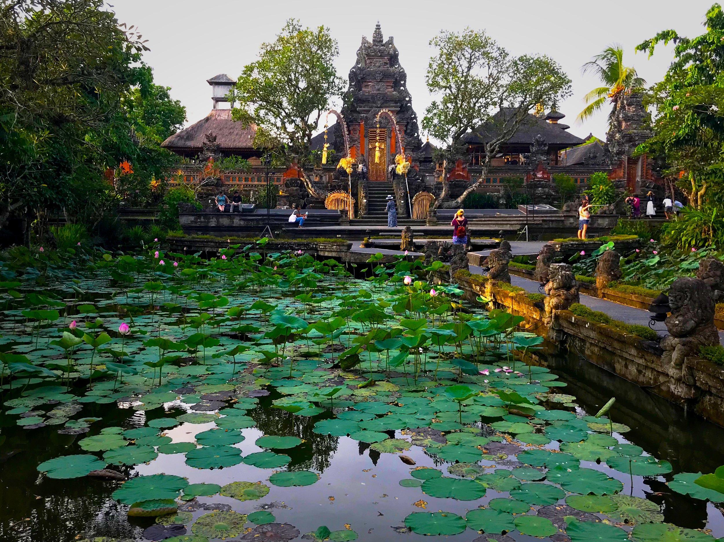 The Saraswati Temple is a peaceful oasis in Ubud