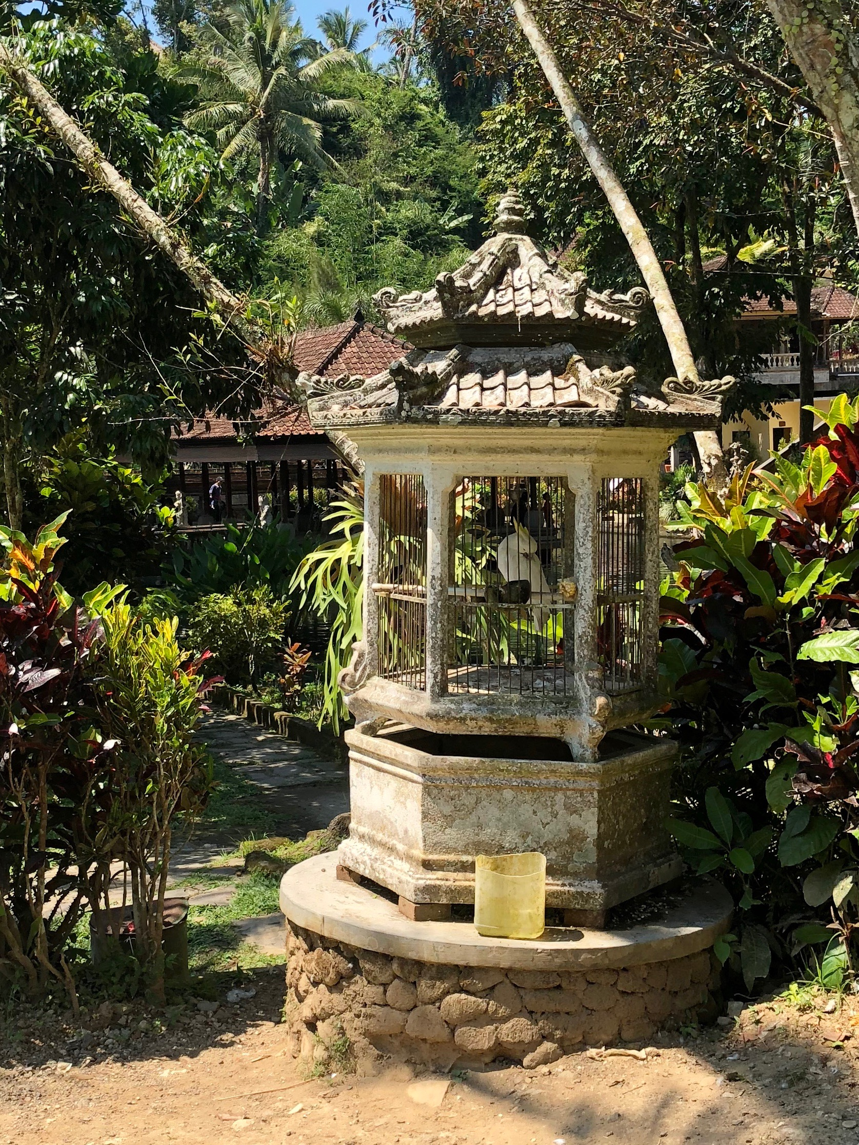 Pagoda-like birdcages line the main pool