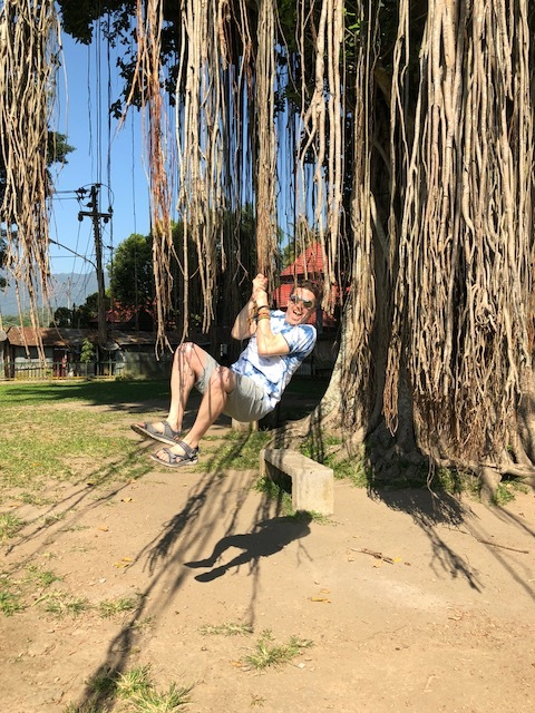 The staff at our resort later told us that our driver had been sharing this photo of Wally swinging on the sacred banyan roots