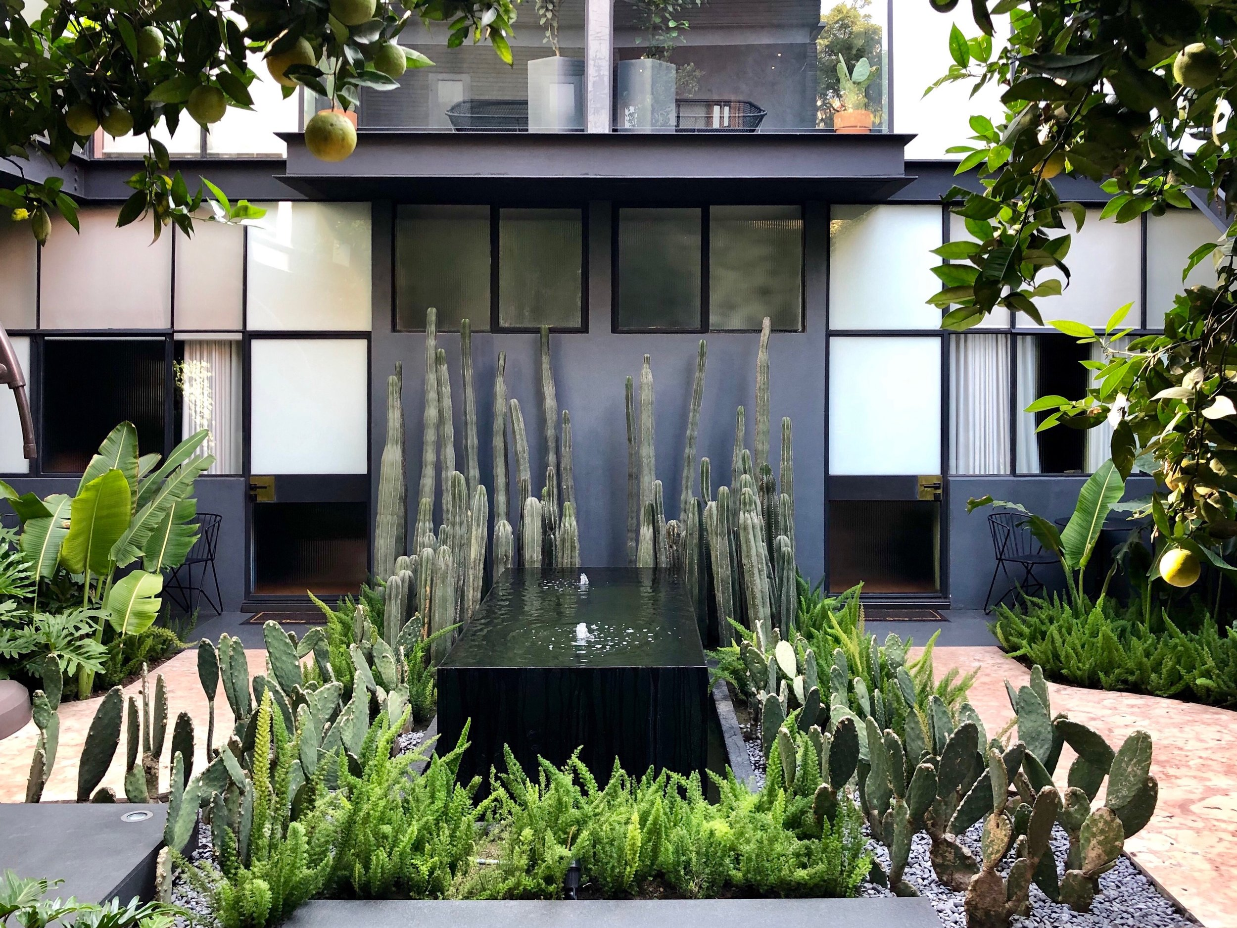 The back courtyard of Ignacia, with its cactus garden and fountain, lies between the old house and the new suites