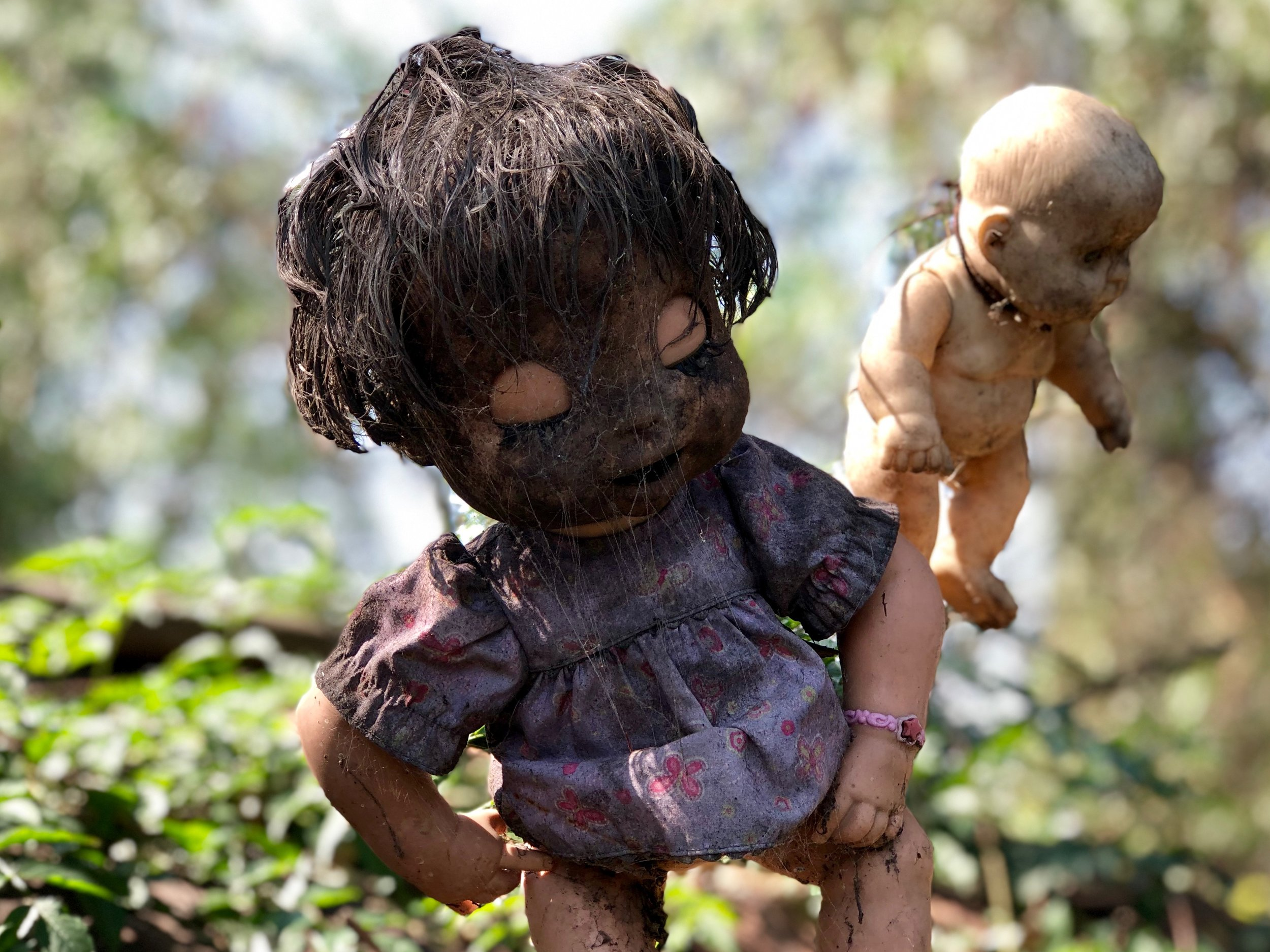 Disgustingly dirty dolls dangle from branches and wires all over the small isle