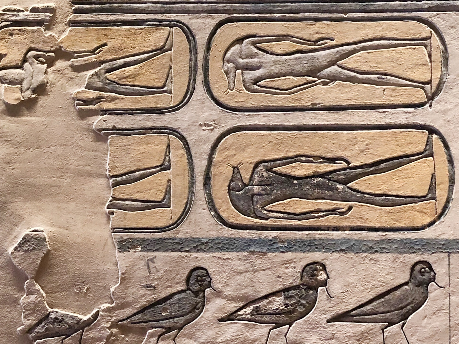 The human-headed birds at the bottom are the ba, the part of the soul that can fly around and protect family members after death