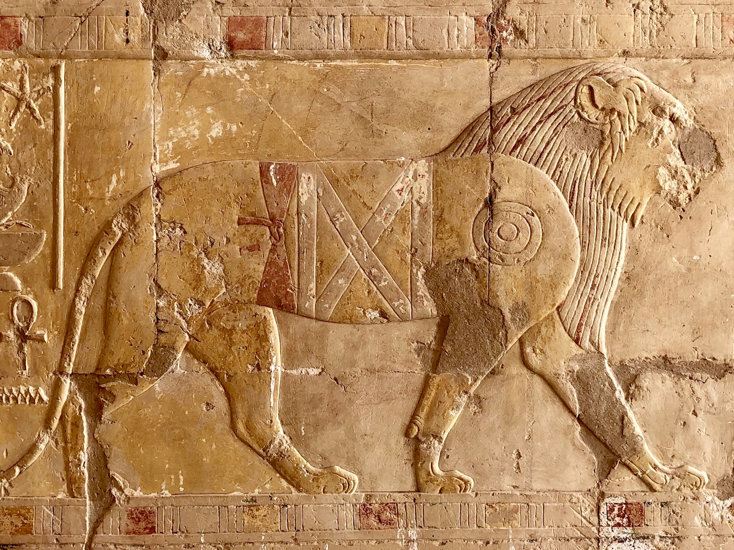 A beautiful carving of a lion, one of the exotic animals from the expedition to the mysterious land of Punt — no one is quite sure where exactly it was