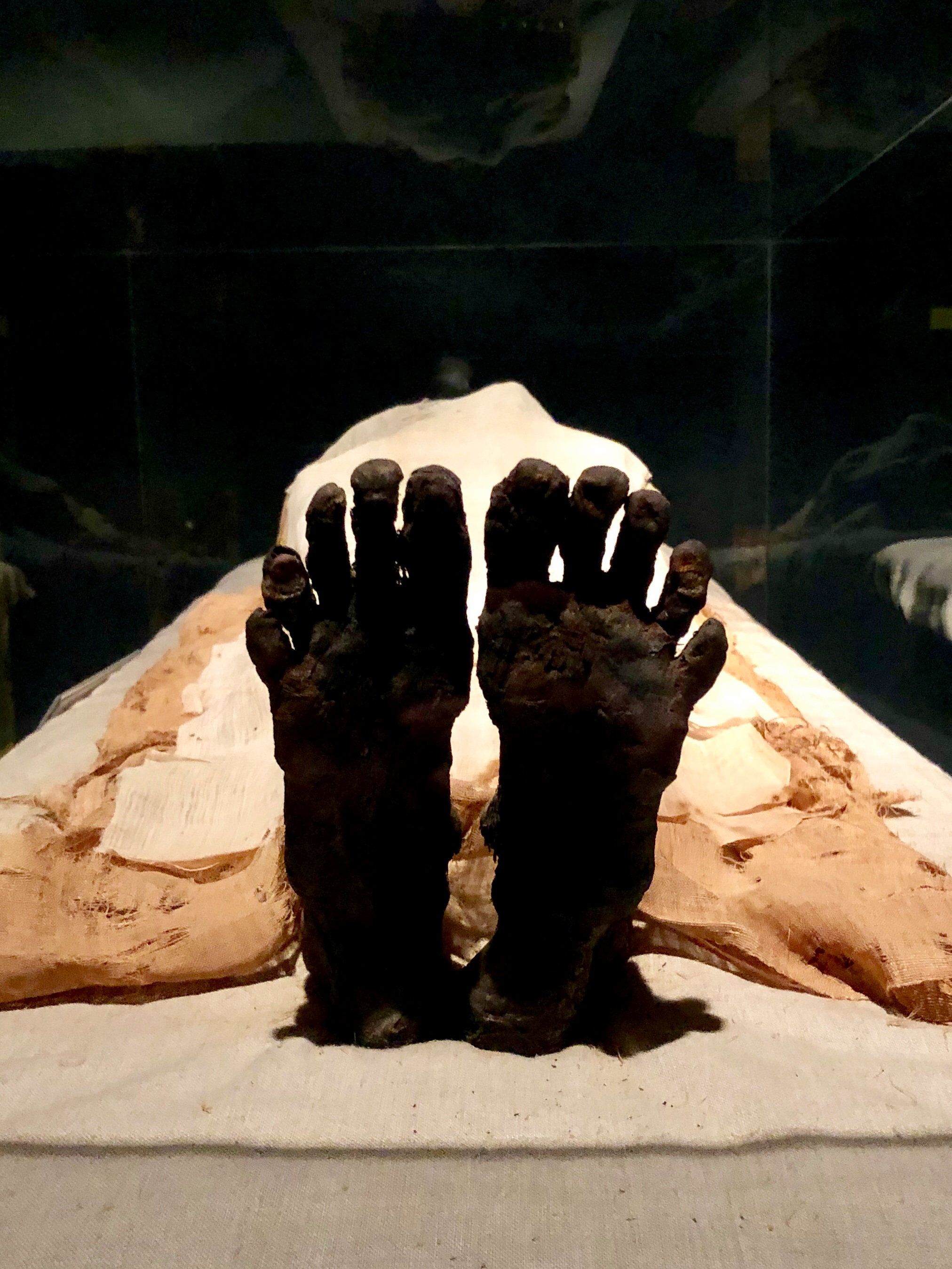 The creepy, dried-up feet of Ramesses I. The mummy was part of a small museum collection in Niagara Falls, Canada before being returned to Egypt in 2003