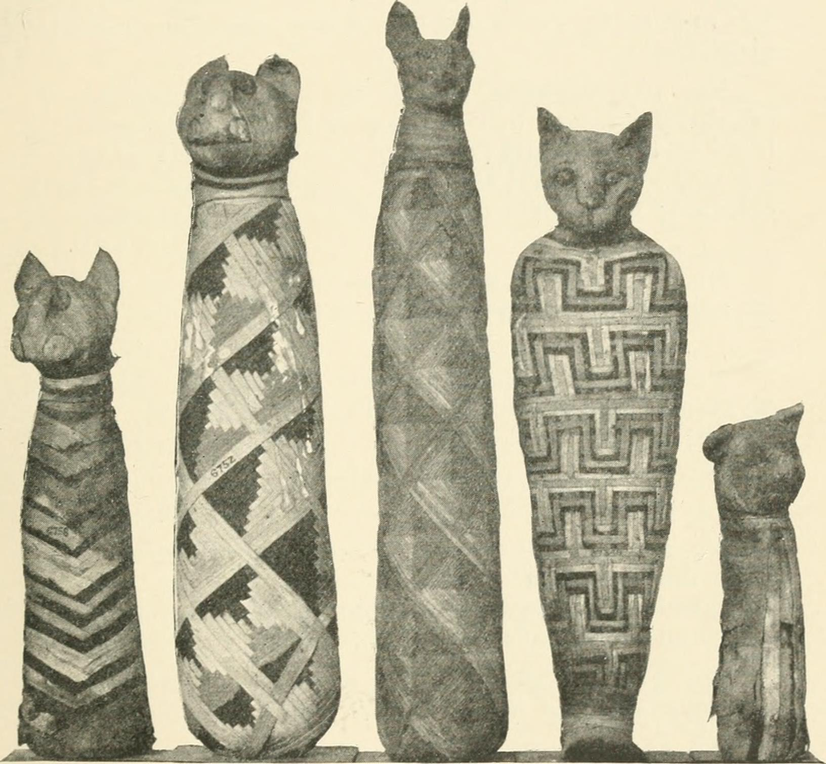 Ancient Egyptians wanted their pet kitties to be with them in the afterlife, so they were mummified and put into their tombs (let's hope they were at least allowed to live out their natural lives)