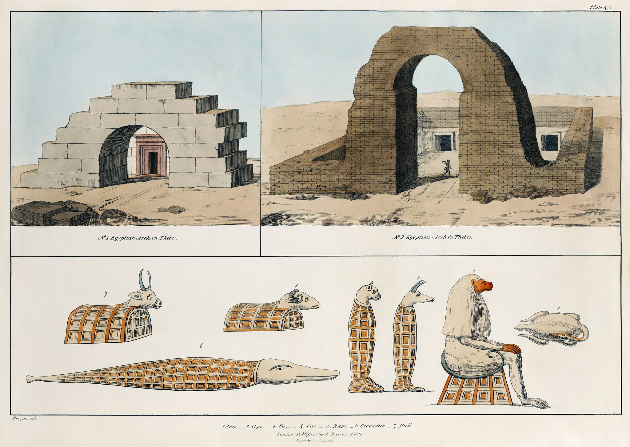 Below the arches, you can see a variety of animal mummies in this illustration by Giovanni Battista Belzoni, a well-known archaeologist