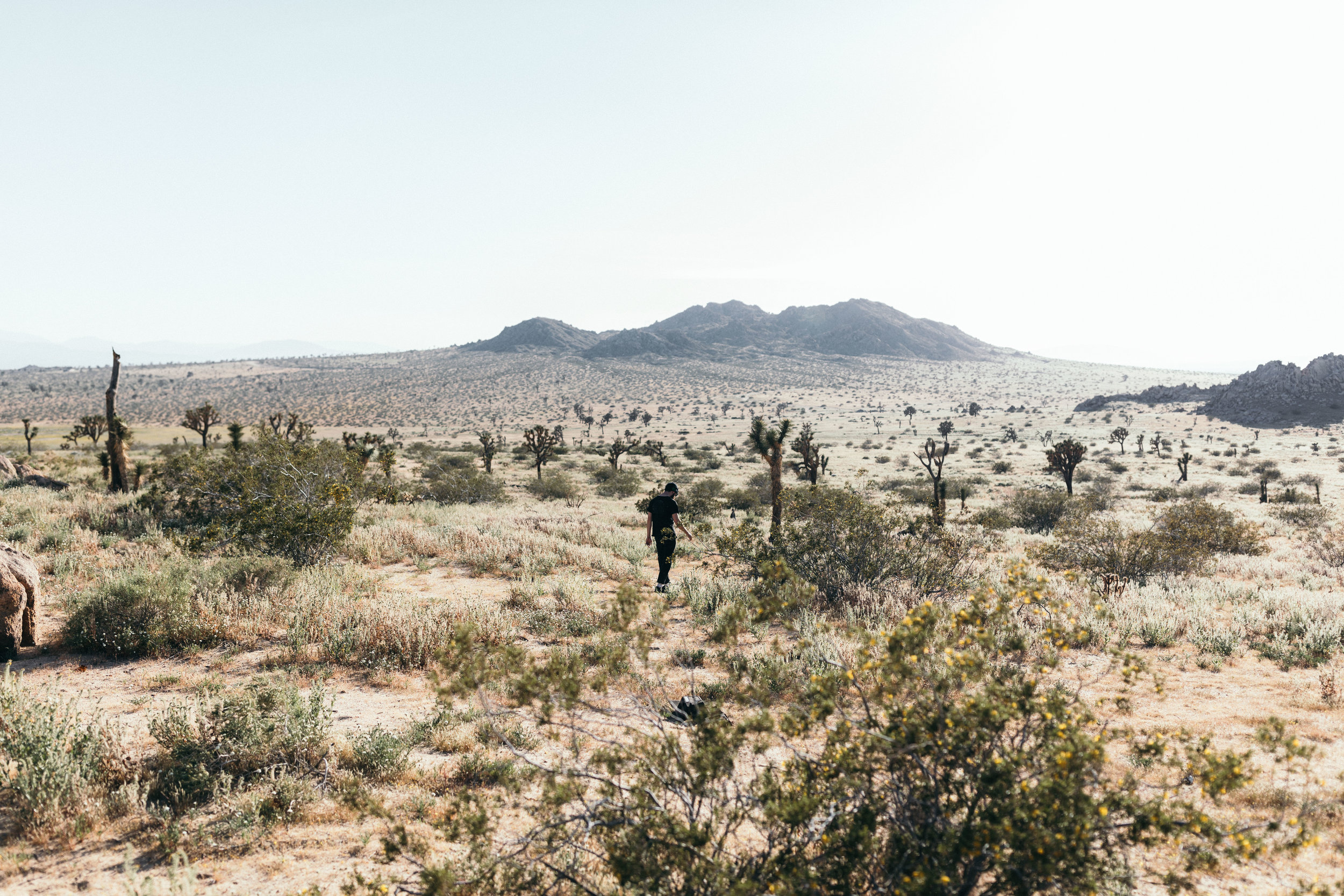 Mitch searching for more desert bones.