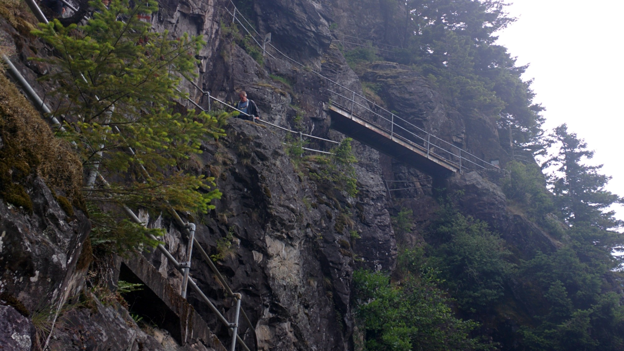 Some of the switchbacks and bridges that make up Beacon Rock Trail