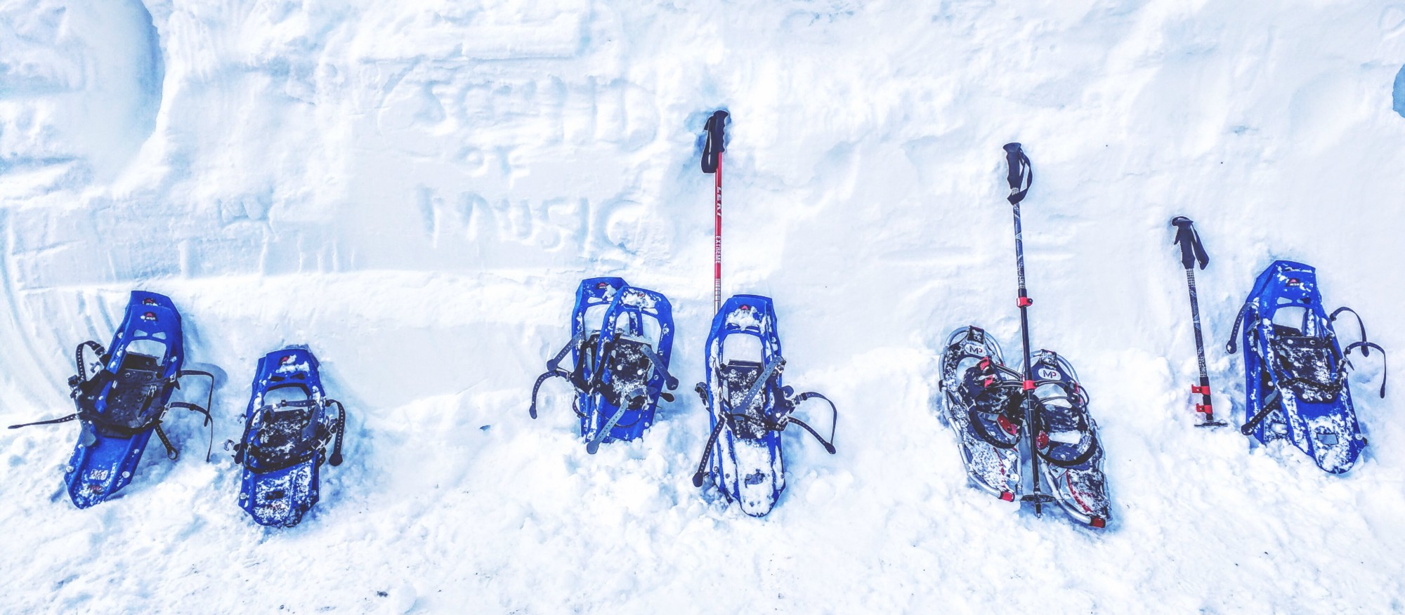 Snowshoes included; poles not